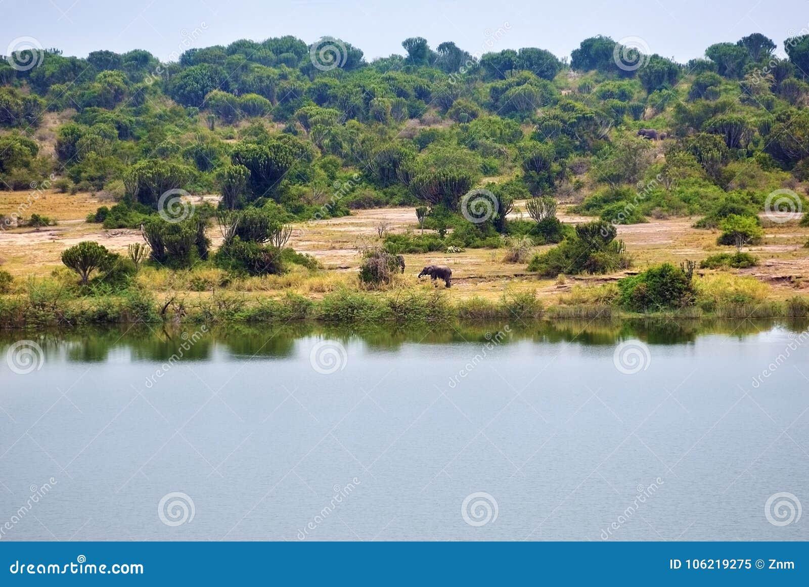 Lake George in Uganda