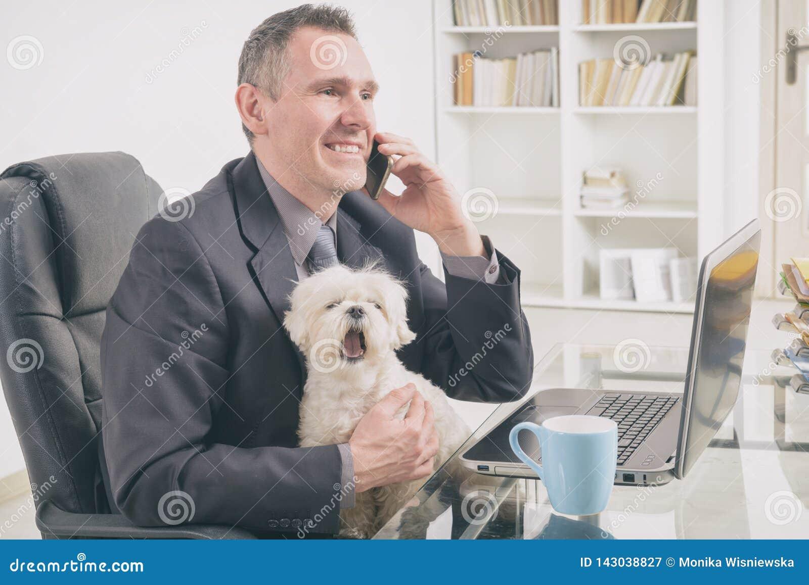 Mit Hund zu Hause arbeiten