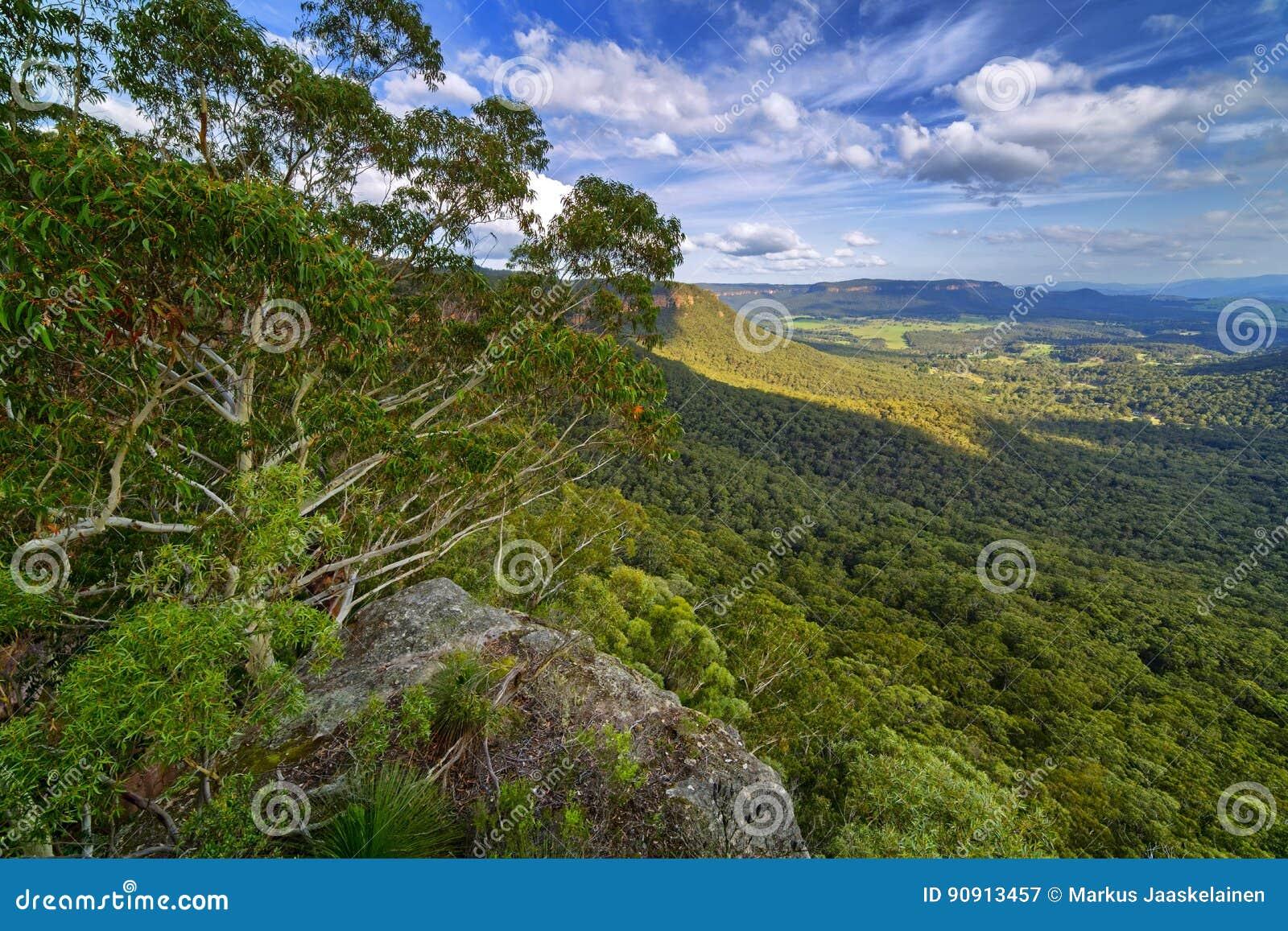 Mount victoria blue mountains