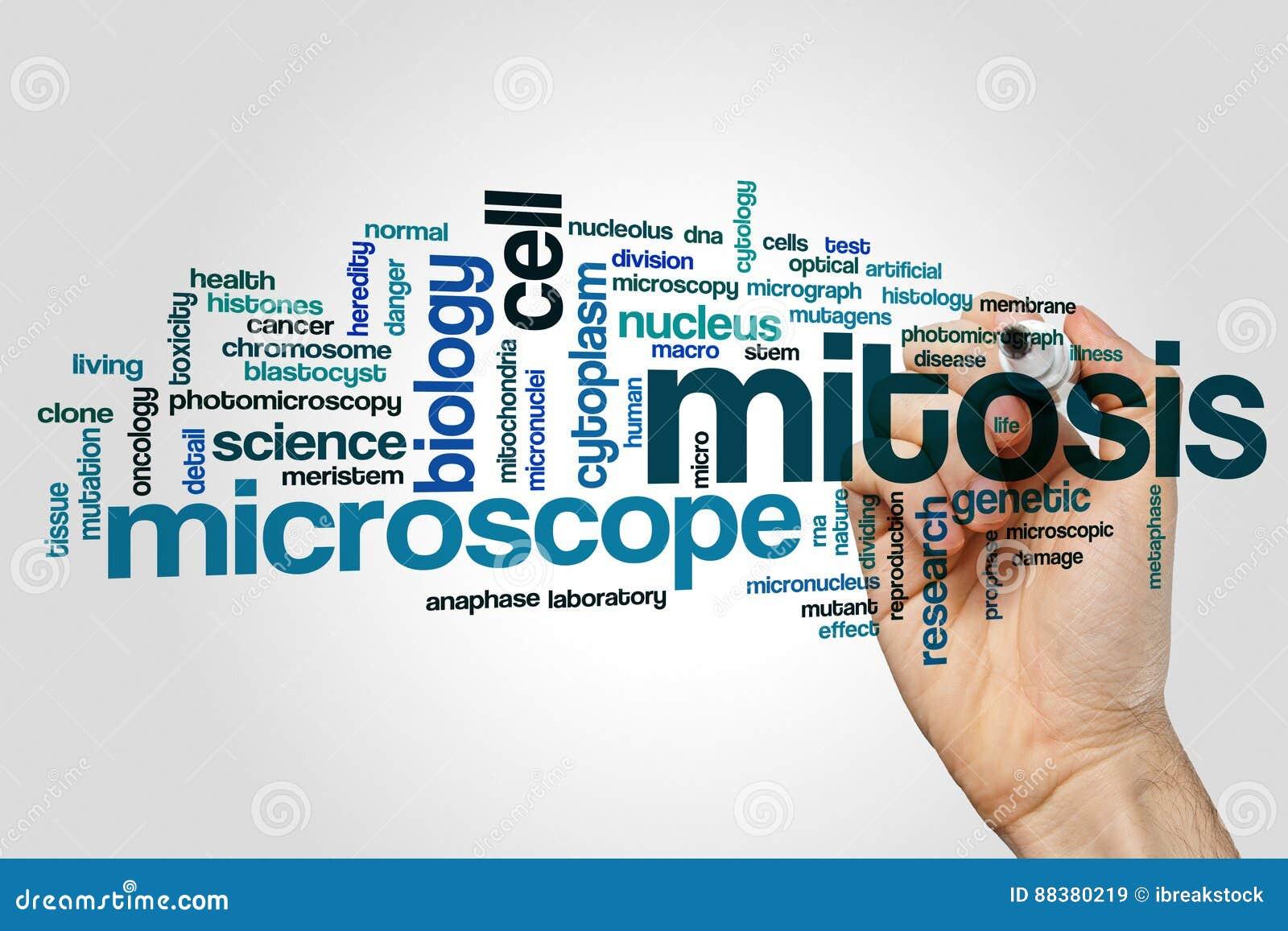 Mitosis word cloud