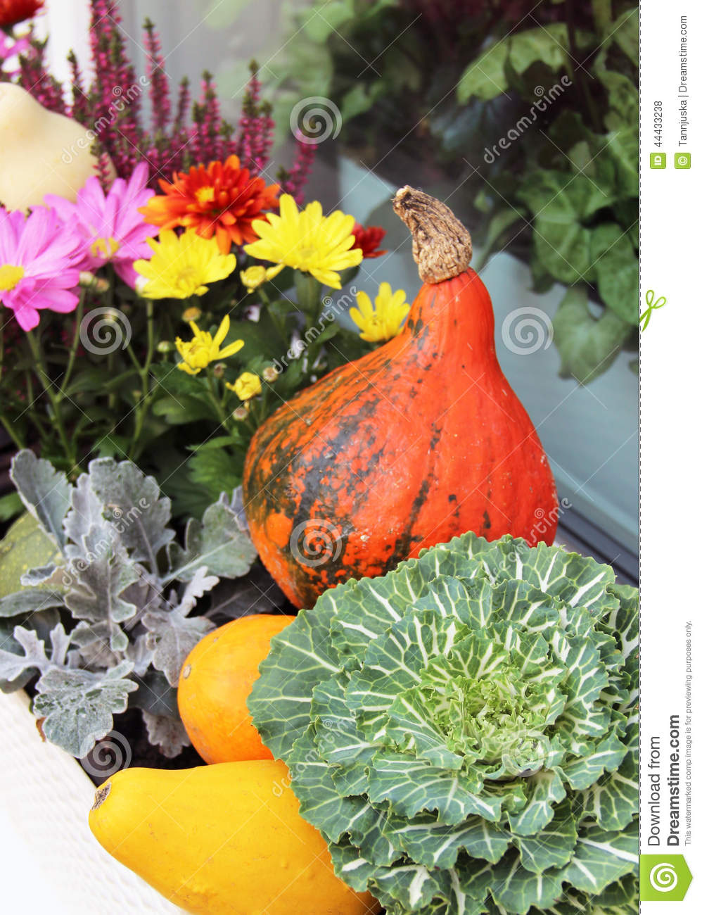 Beautiful fall flowers good a beautiful bouquet of fall flowers hd gallery of beautiful fall flowers izmirmasajfo