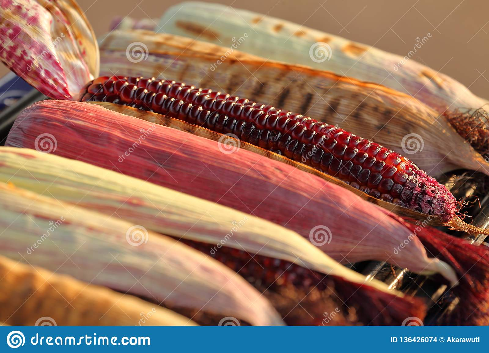 Mix of varieties of native corn and maize grilled in hot fire with charcoal