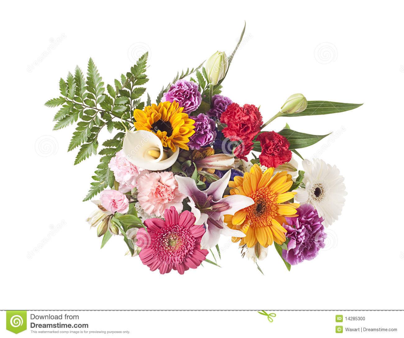mixed flower arrangement on white stock photo image of blooms beautiful 14285300. Black Bedroom Furniture Sets. Home Design Ideas