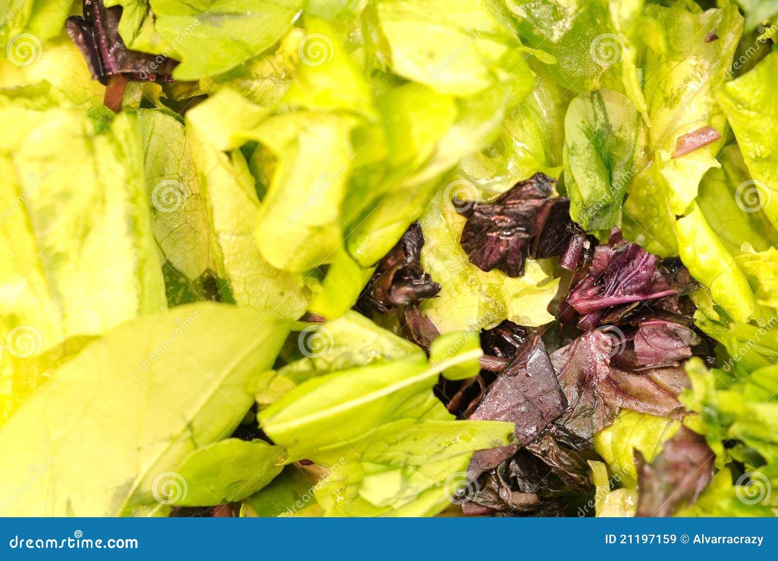 Mixed salad background