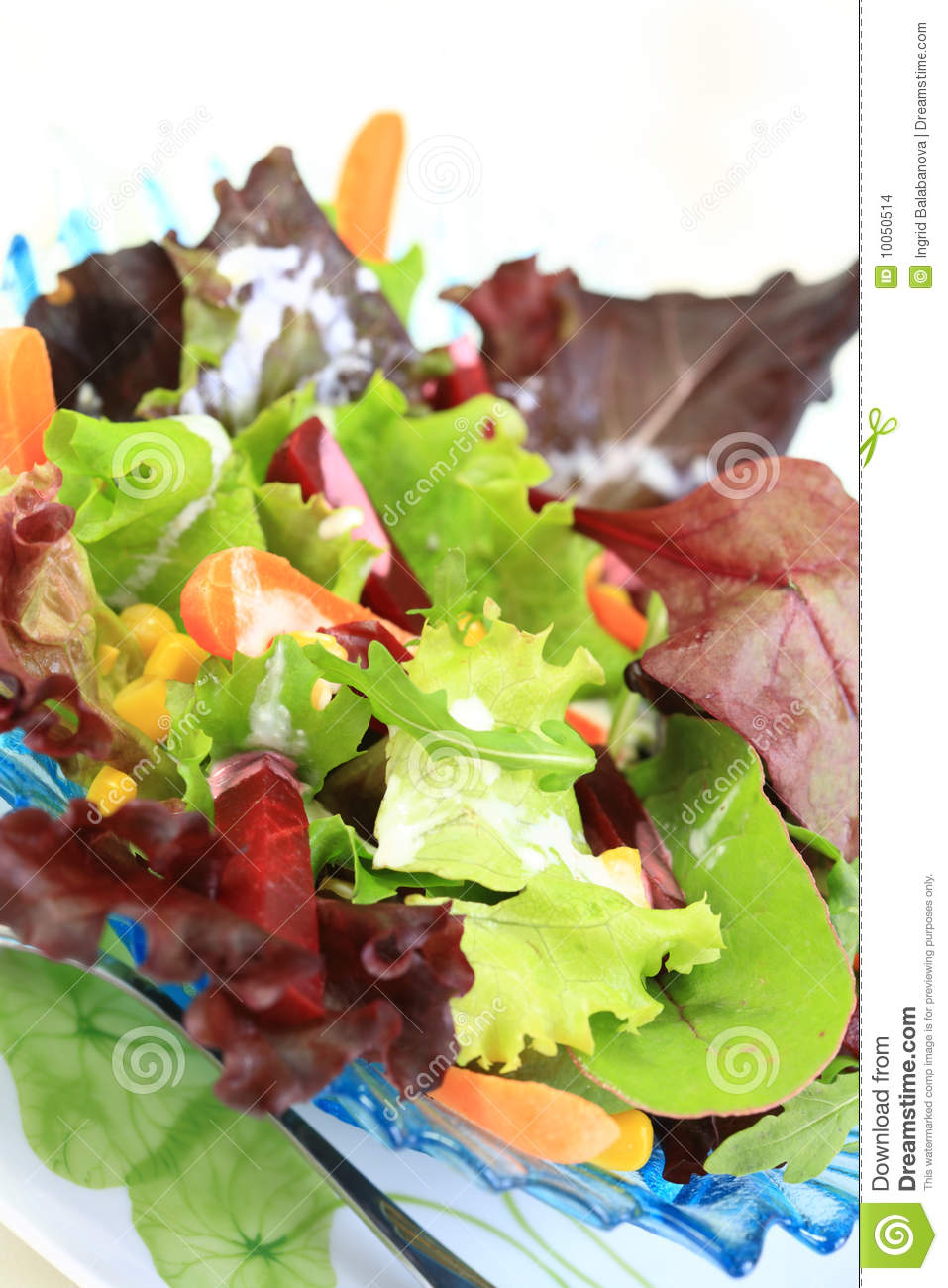 Mixed Vegetable Salad Stock Images Image 10050514