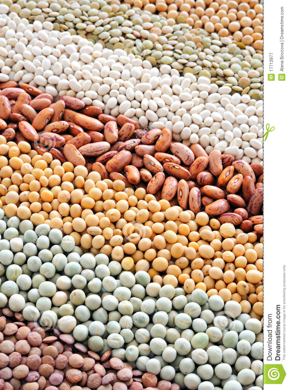mixture of dried lentils  peas  soybeans  beans royalty free stock photography