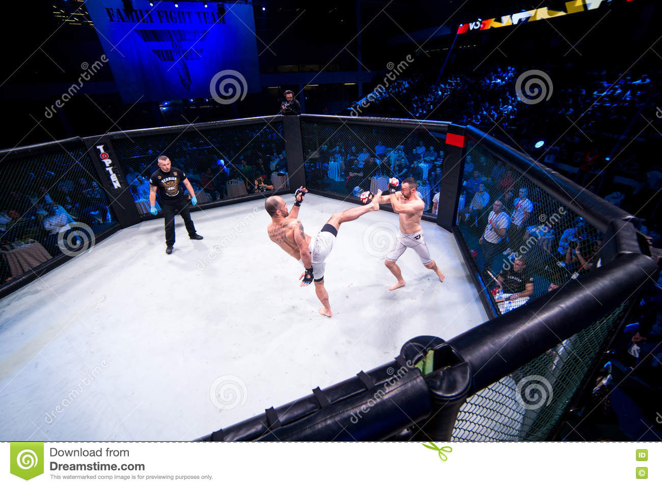 MMA fight turnament editorial photo  Image of blood, kick - 81246216