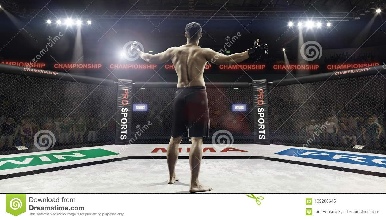 Mma Fighter In Arena Greeting The Spectators, Rear View
