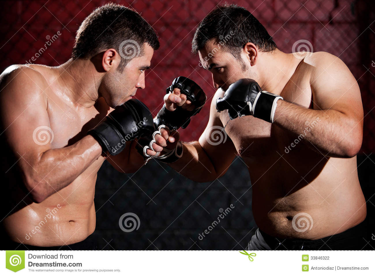MMA Fighters During A Fight Stock Photography - Image ...