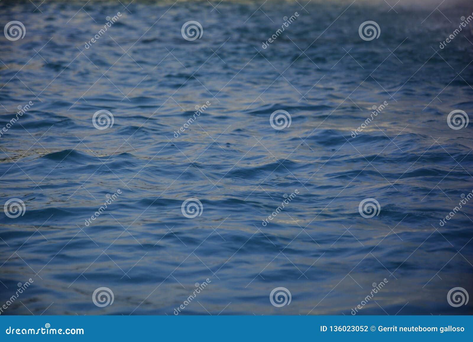 Mnóstwo woda z małymi falami