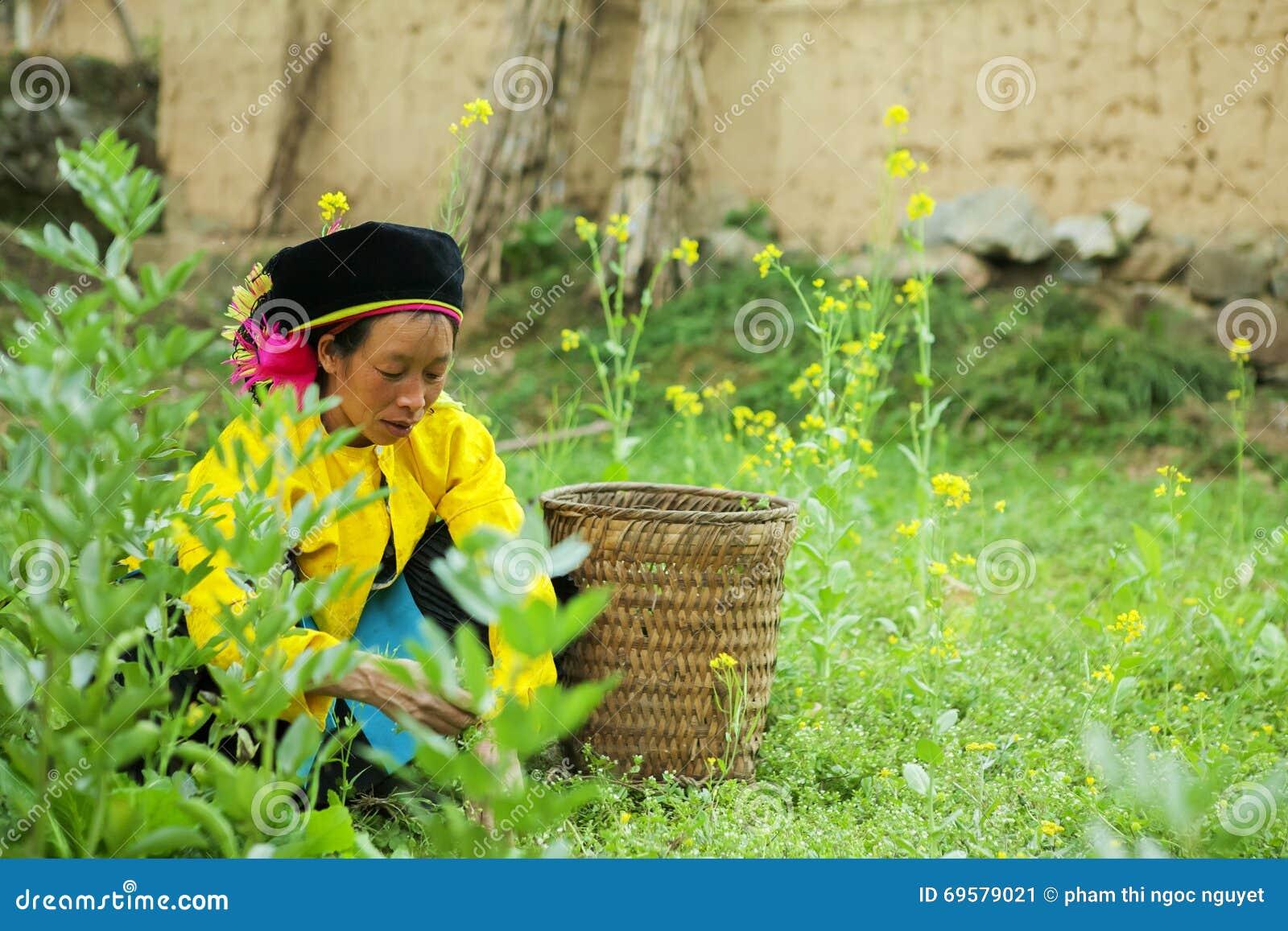 Mniejszości etnicznej kobiety działanie