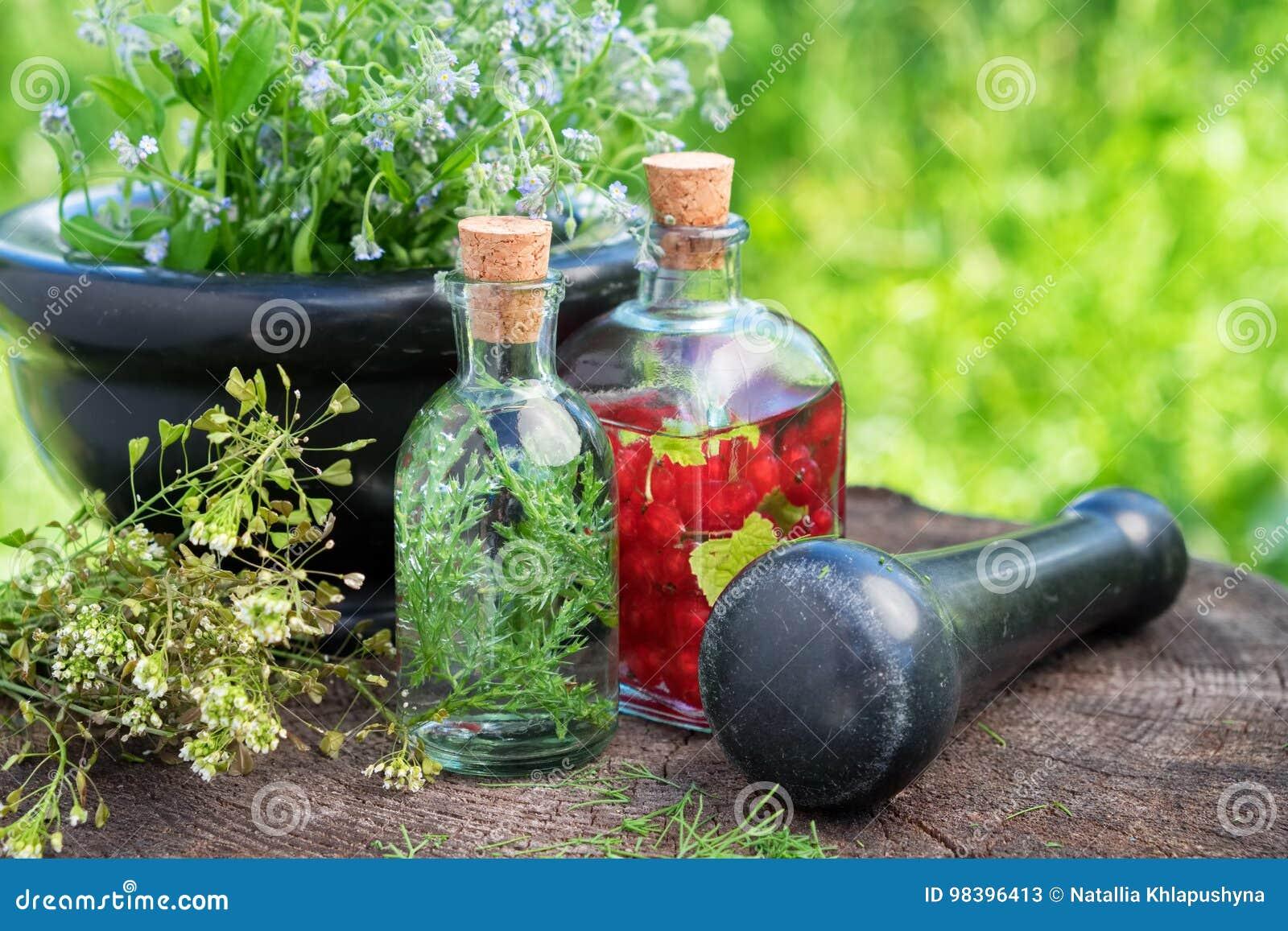 Moździerz leczniczy ziele, ziołowy tincture, zdrowa infuzja i lecznicze rośliny,