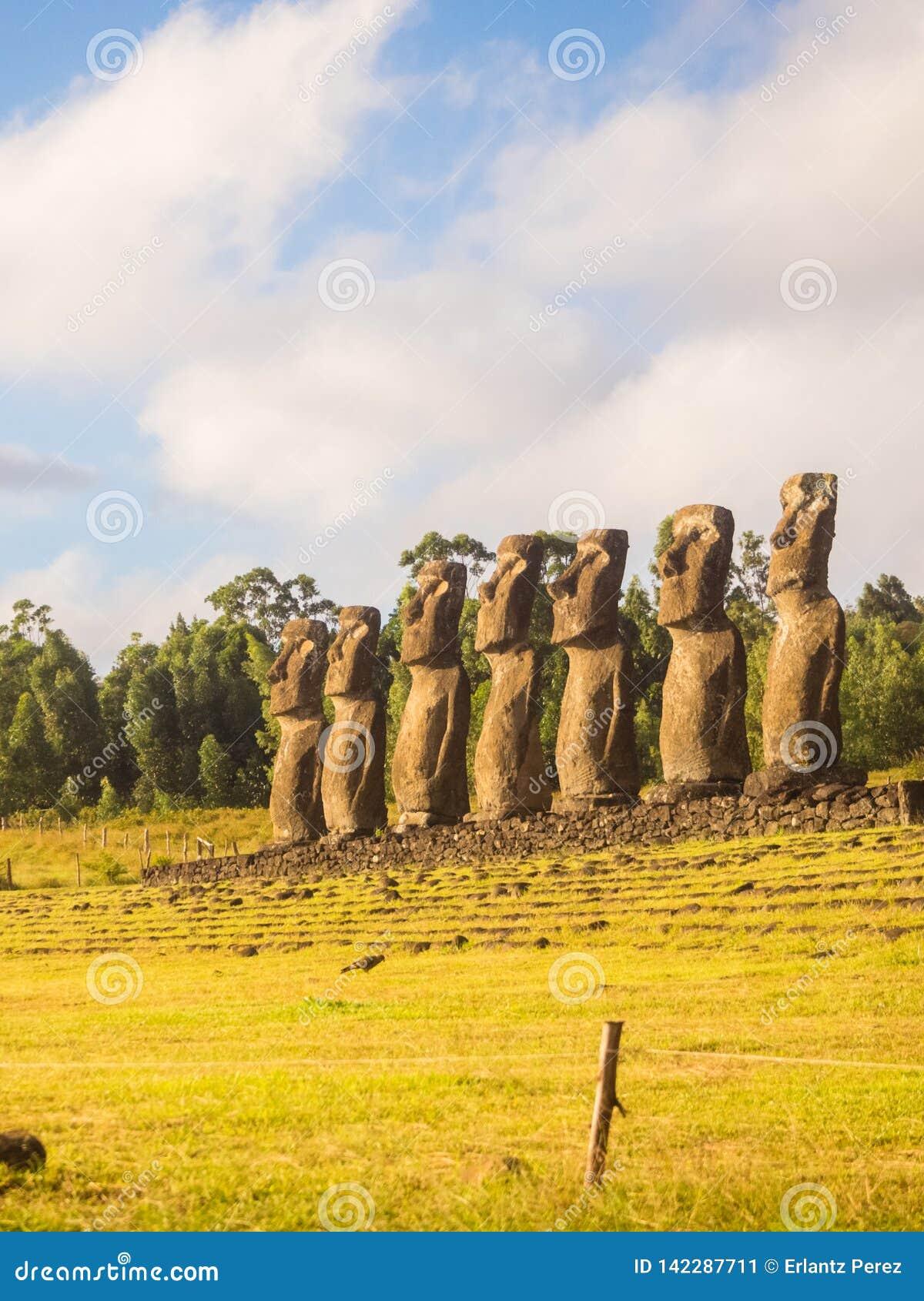 Moai επτά Ahu Akivi, νησί Πάσχας, Χιλή