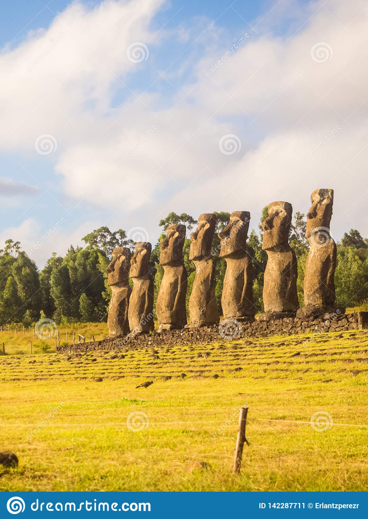 Moai sete de Ahu Akivi, Ilha de Páscoa, o Chile