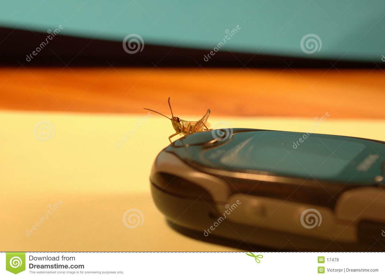 Mobiele sprinkhaan-2