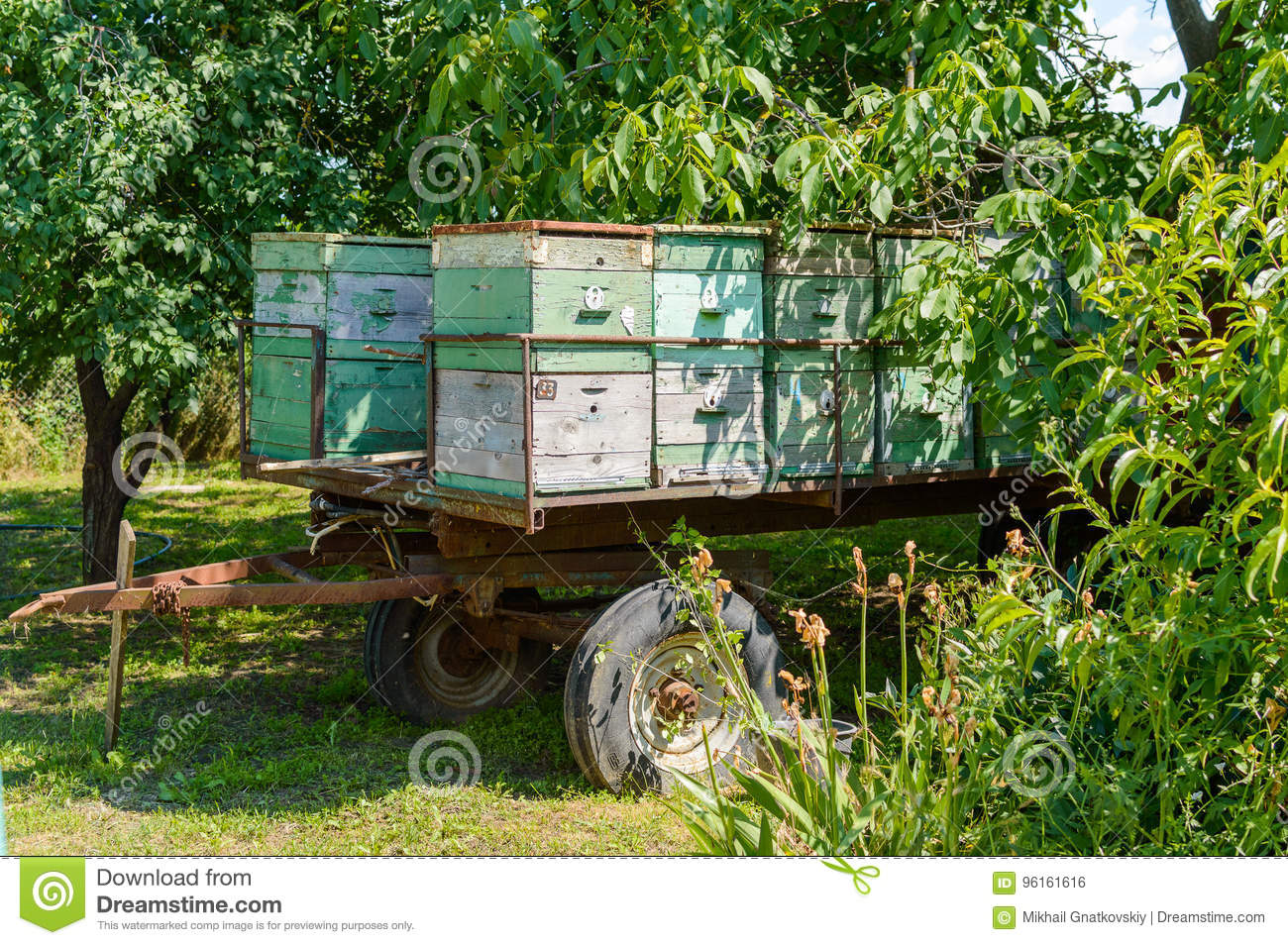 Mobile apiary-trailer at forest