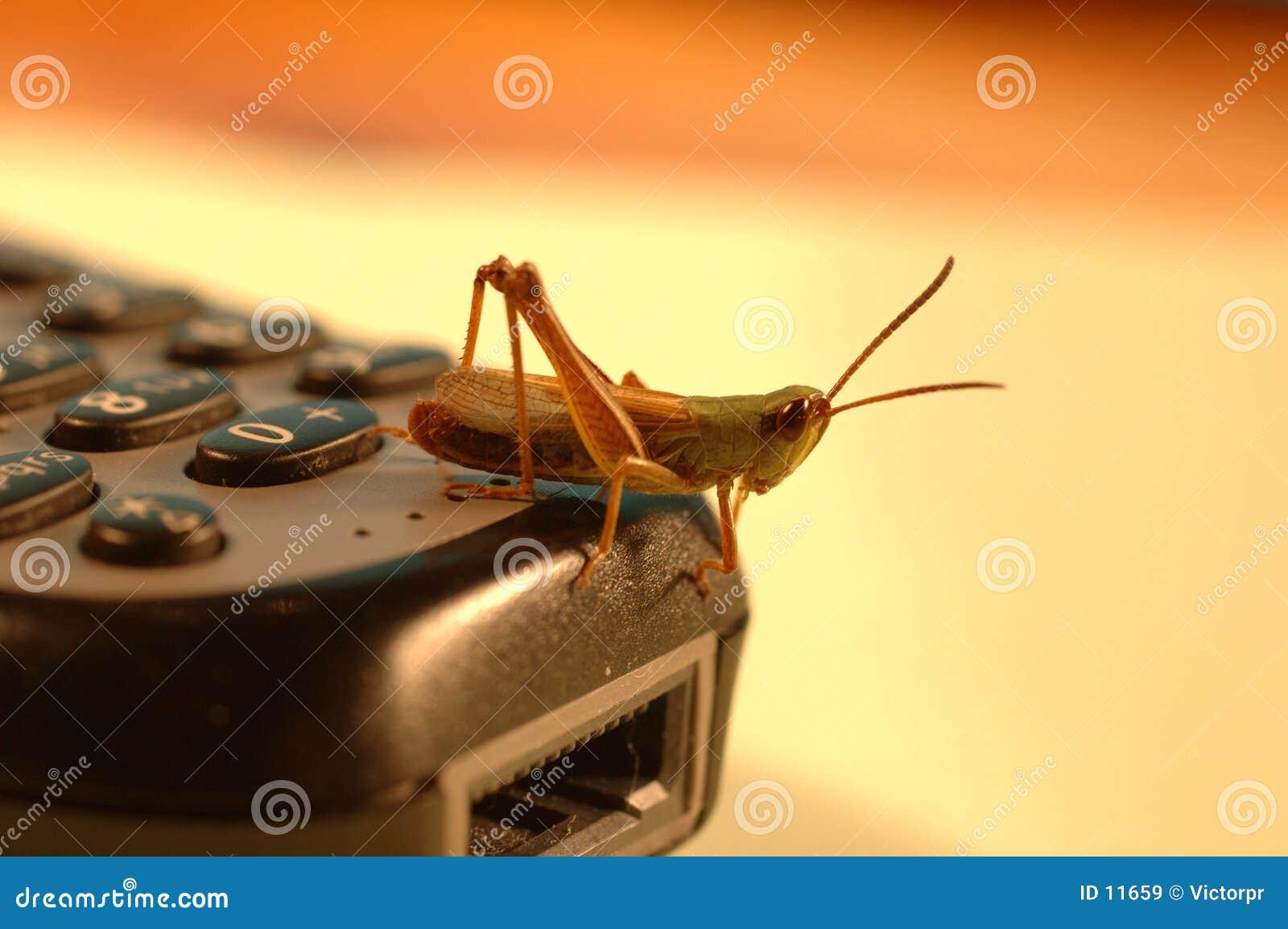 Mobile grasshopper