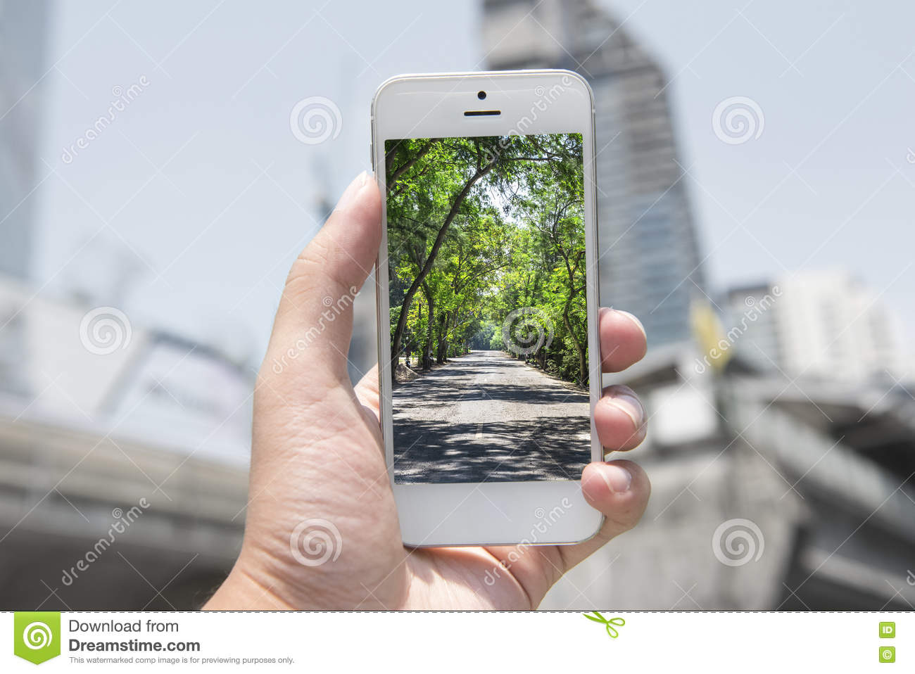 Mobile , smart phone with nature picture and city at the background , nature mobile set 1