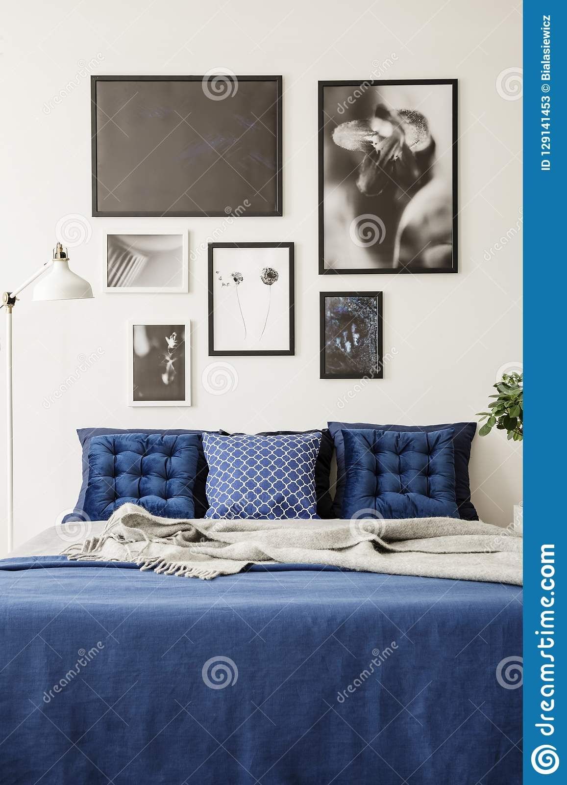 Mock Up Picture Gallery On A White Wall Above A Large Bed With Navy