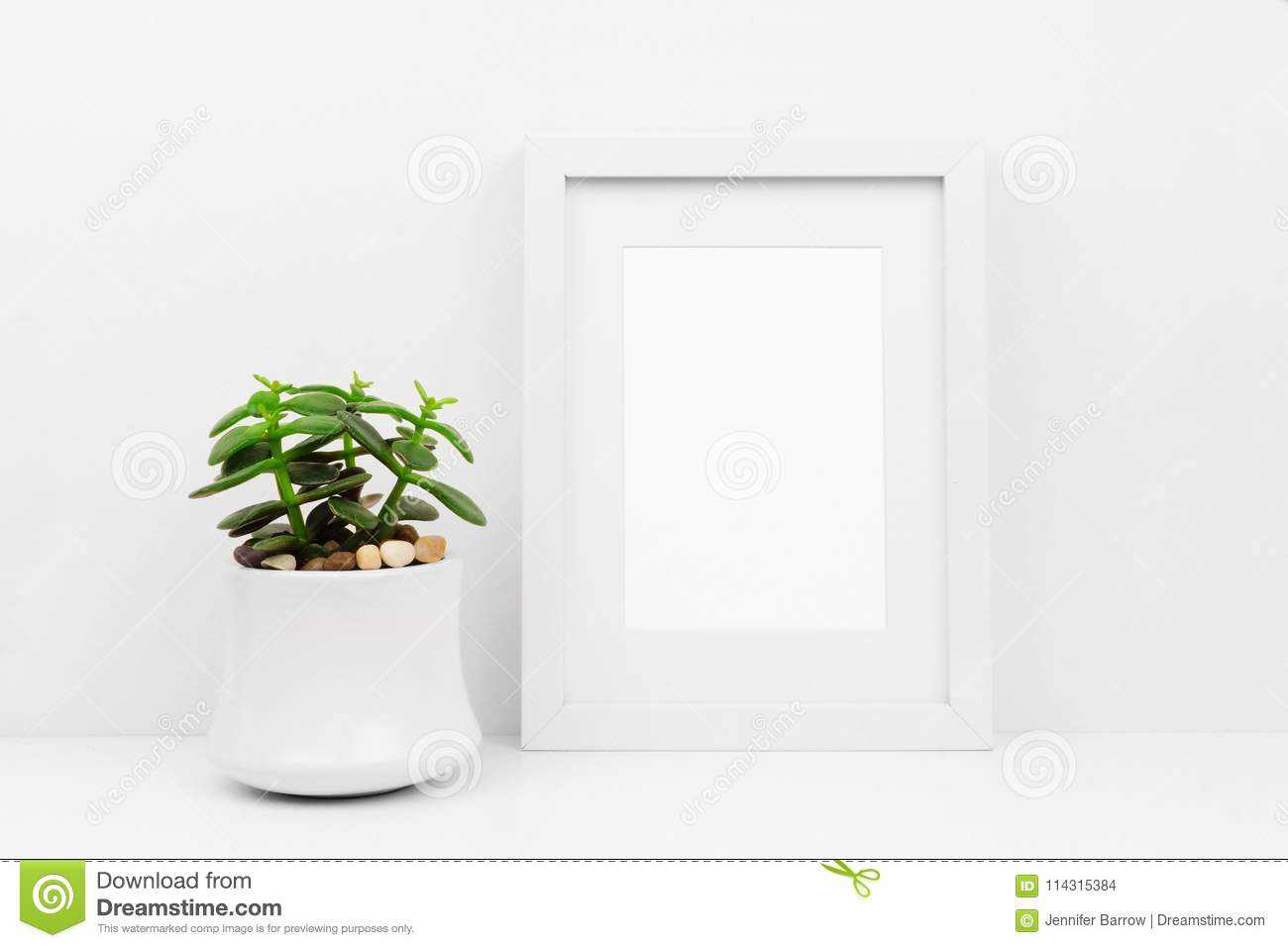 Mock Up White Frame And Succulent Plant Against White Wall On Shelf ...