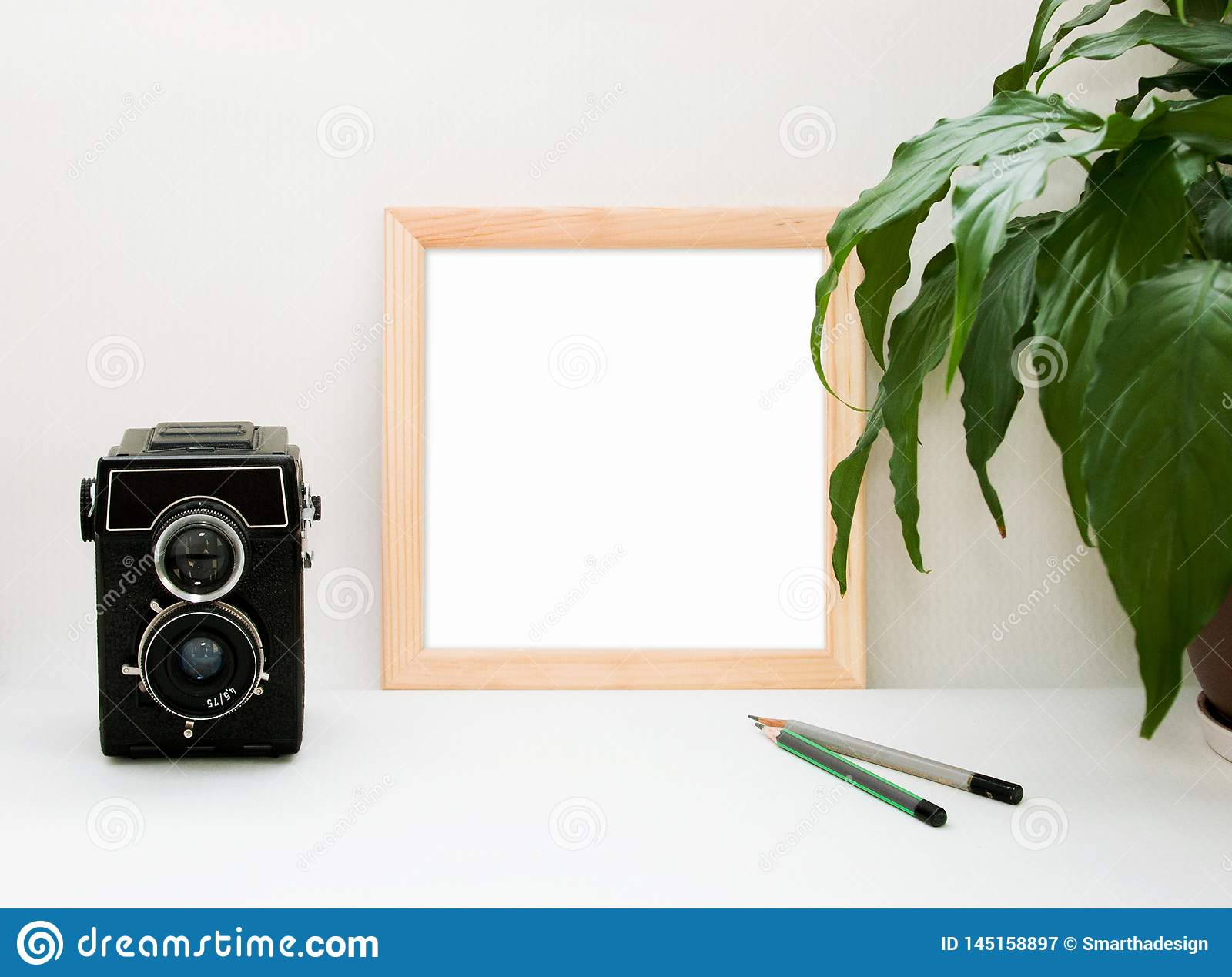 Mock up wooden frame, old camera, plant and pencils. Interior home square poster mockup with wood frame and green leaves on white