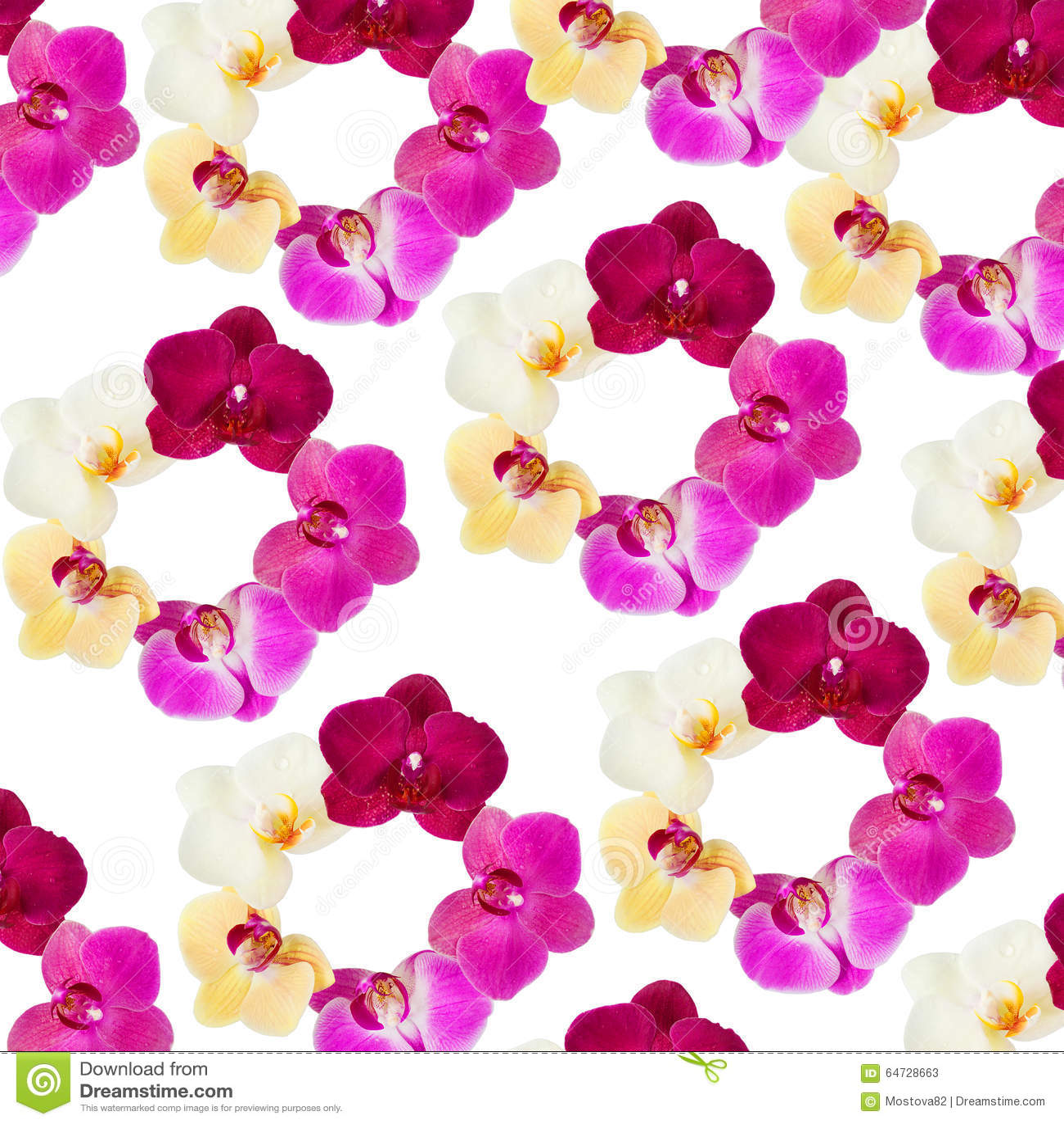 Modèle avec des fleurs d orchidées sur le fond blanc