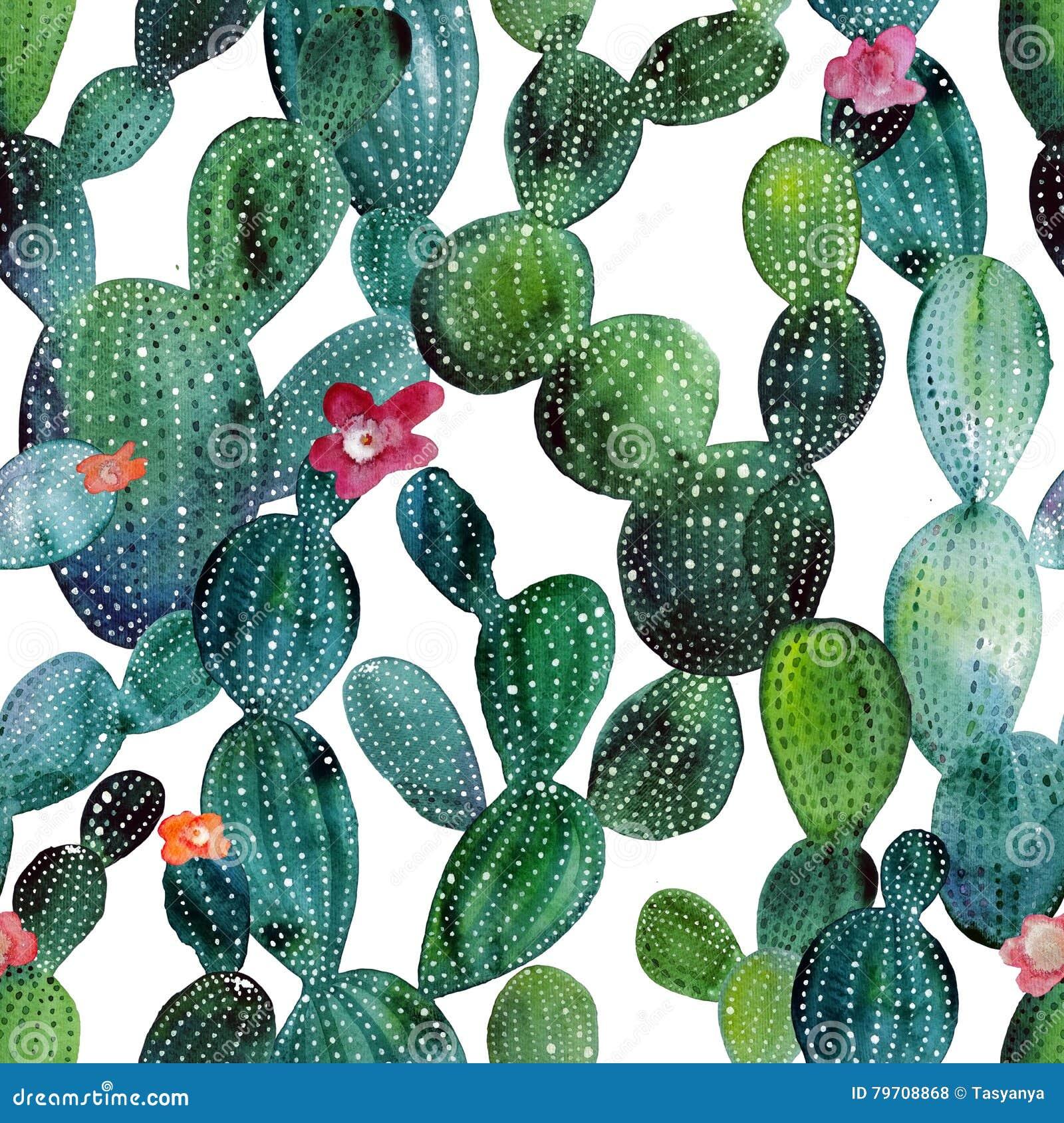 Modèle De Cactus Dans Le Style Daquarelle Illustration Stock
