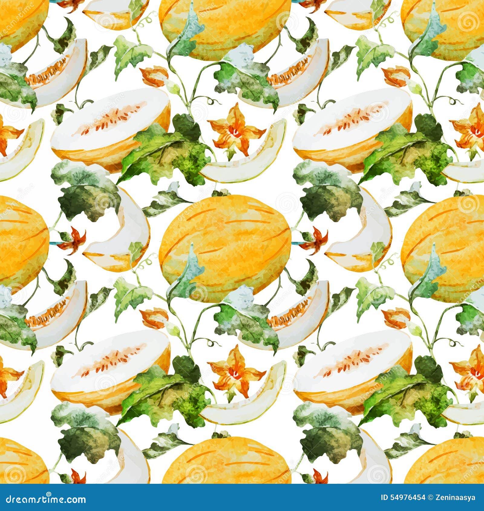 Modèle de melon de pastèque d aquarelle
