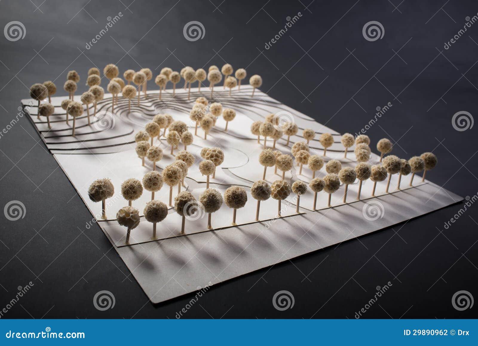 Modèle d échelle de parc