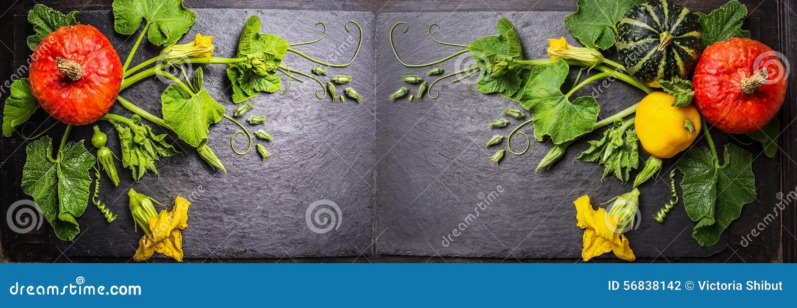 Mod le de potiron avec des fleurs des tiges et des feuilles sur le fond fonc d 39 ardoise - Feuille d ardoise ...