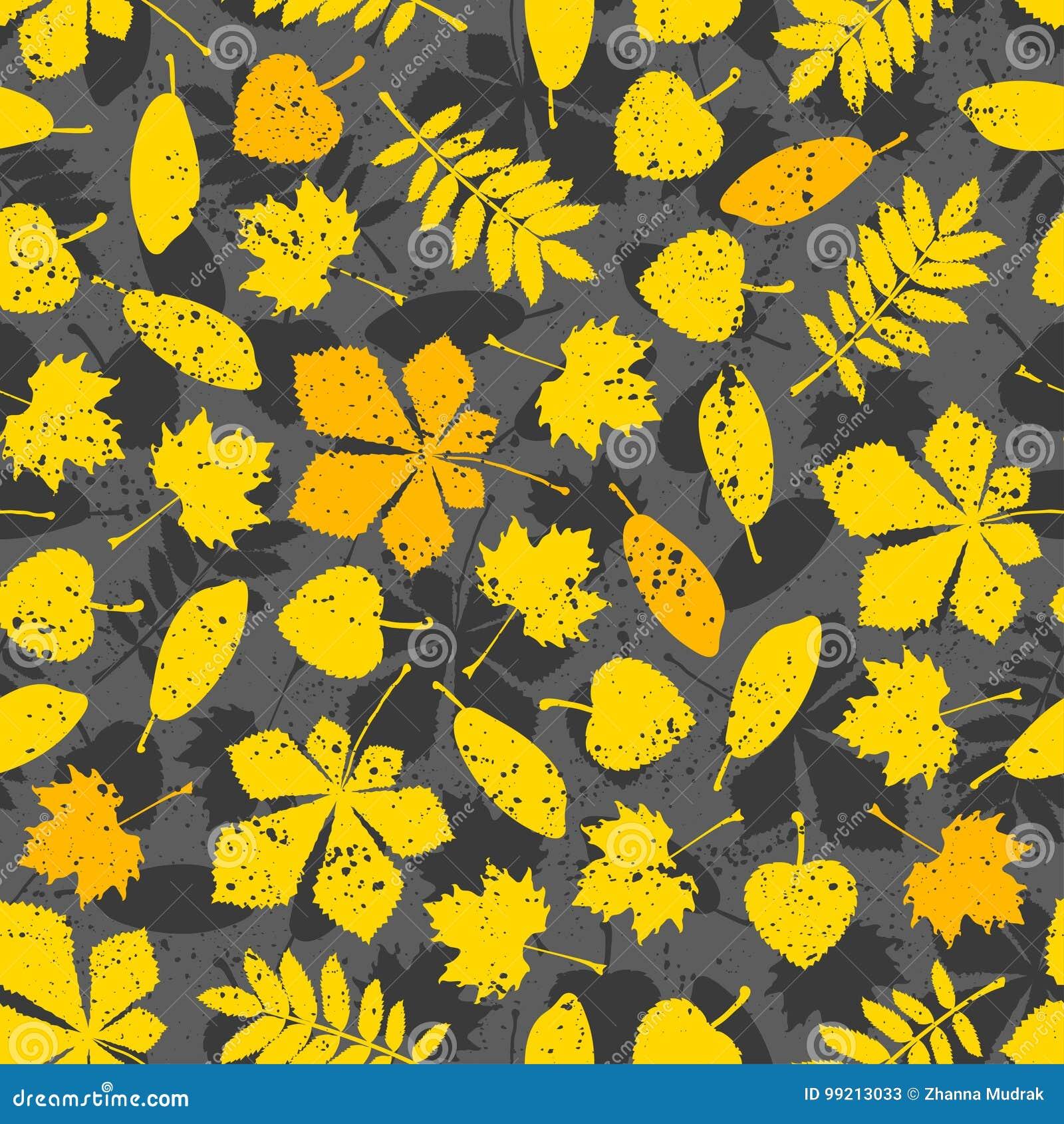 Modele Des Feuilles D Orange Sur Le Fond Gris Papier Peint De Nature