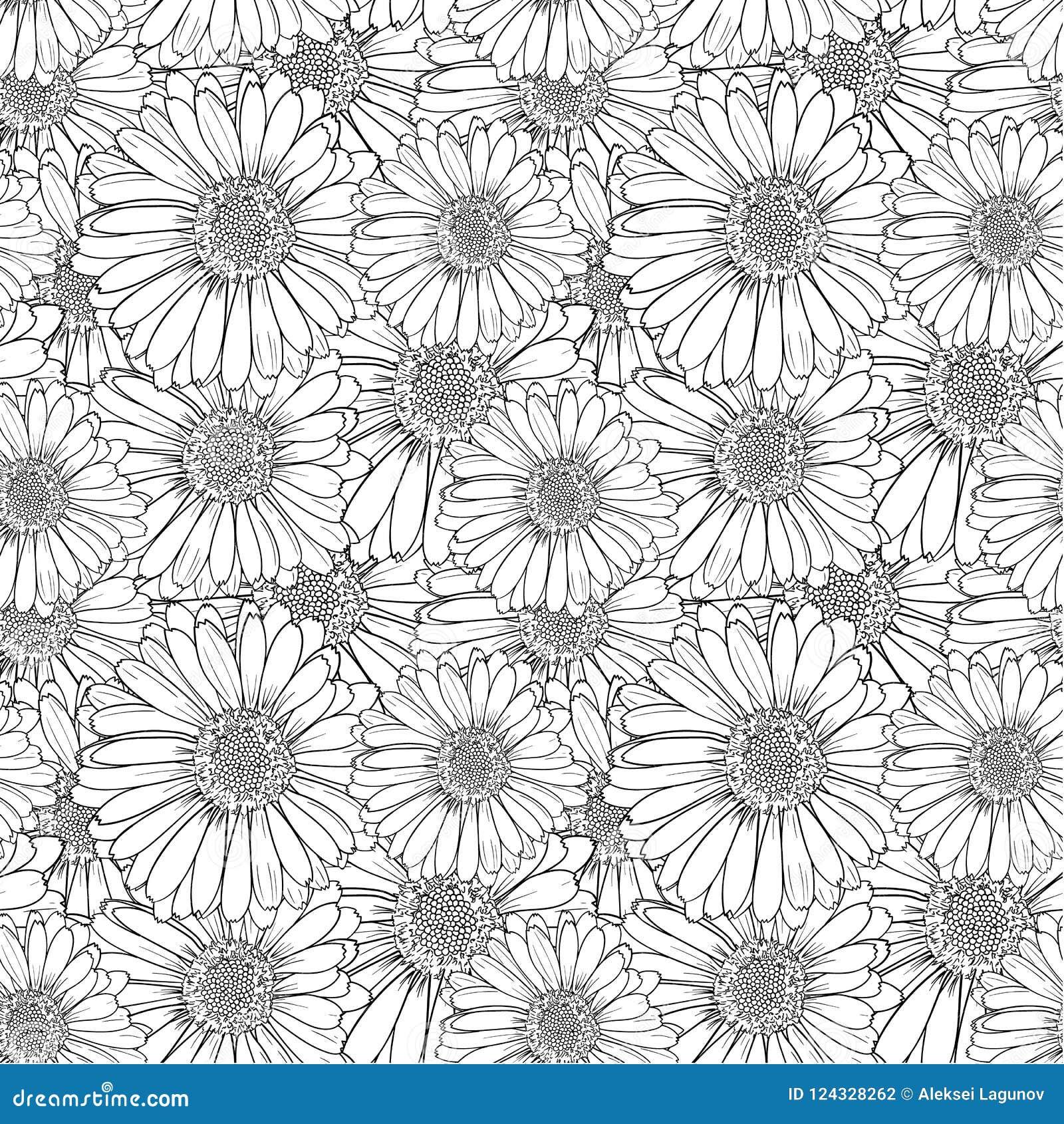 Modèle floral sans couture de vecteur, fleurs d ensemble, illustration noire et blanche de croquis, fond sans fin