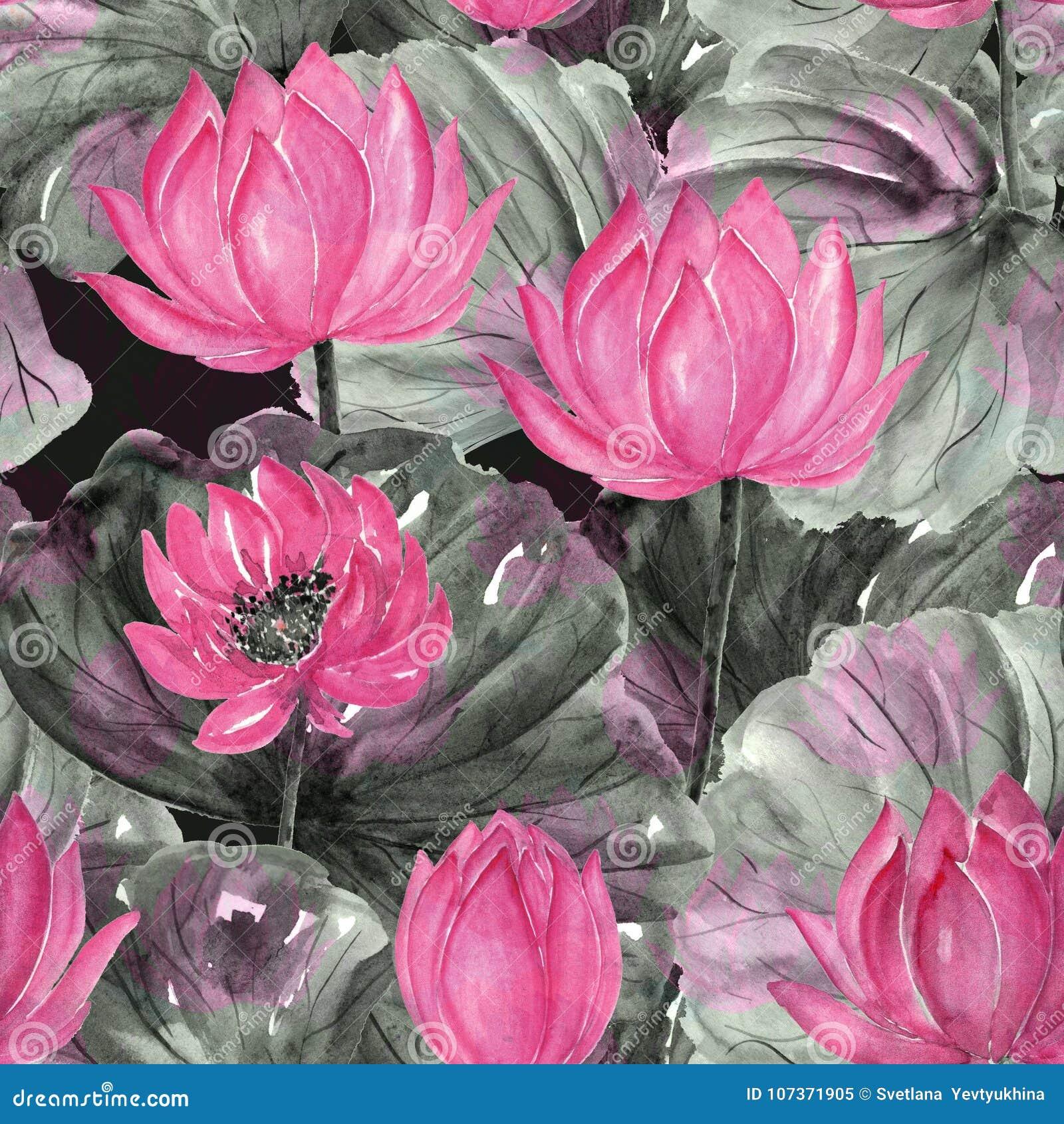 Modèle floral tropical sans couture d aquarelle Fleurs roses, gris - feuilles de vert