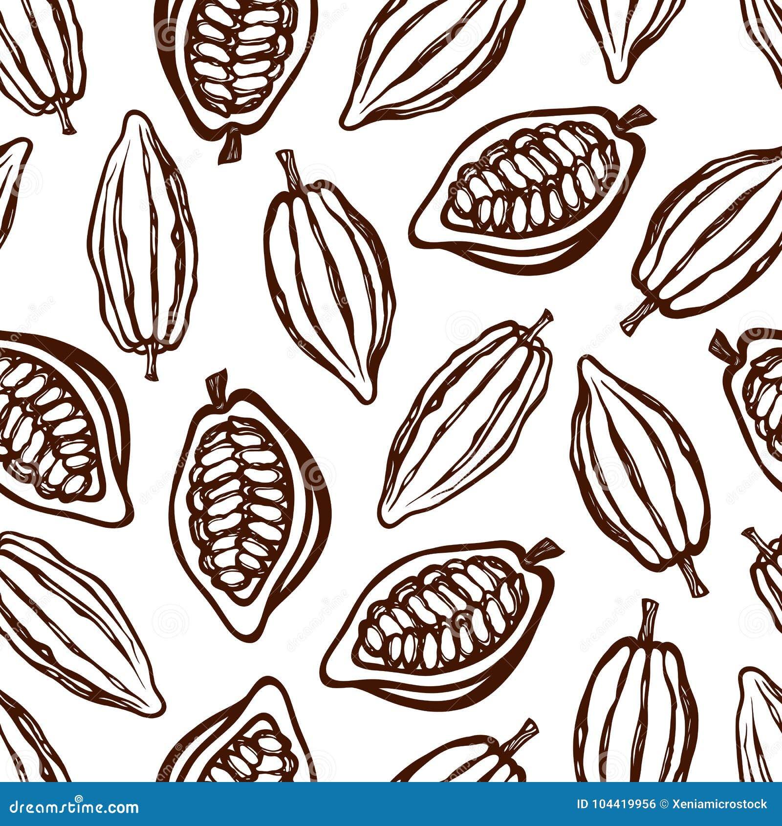 Modèle sans couture avec des fruits de cacao monochrome Texture pour empaqueter, identité d entreprise, menu Tiré par la main