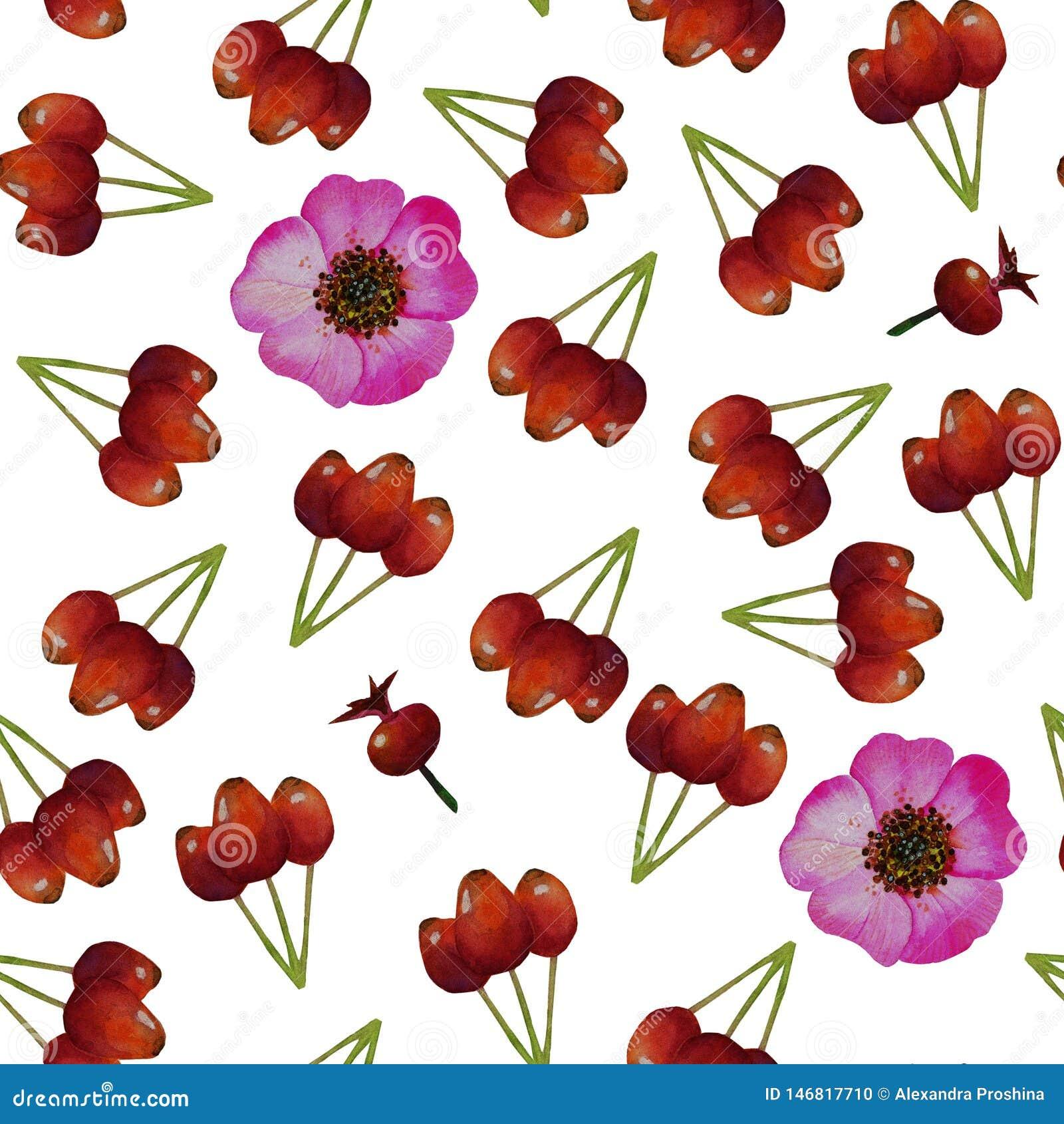 Modèle sans couture avec la bruyère, fleurs roses sauvages, fruit de cynorrhodons