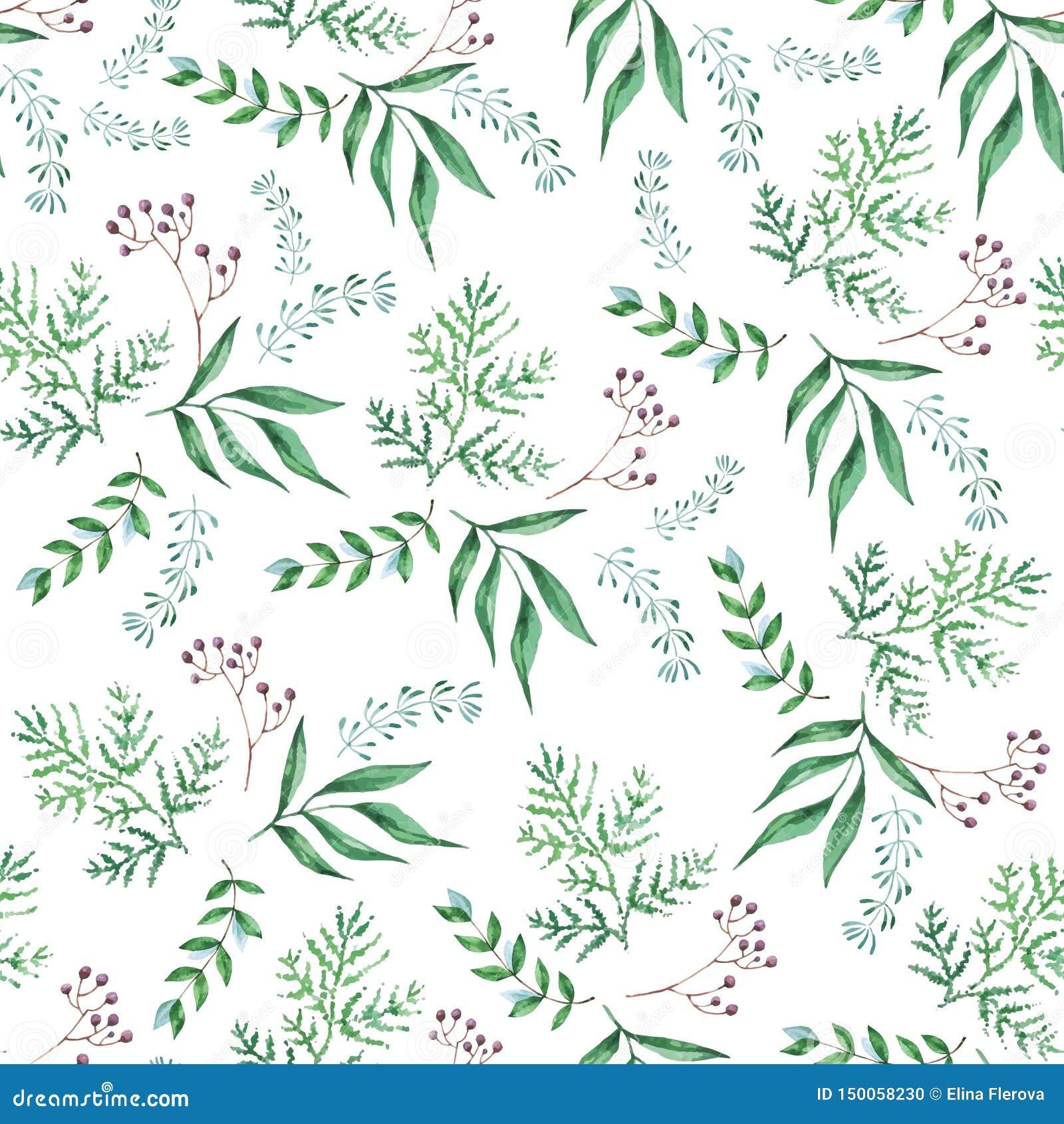 Modèle sans couture d aquarelle des branches, feuilles vertes, herbes, plante tropicale Fond frais d eco de vecteur sur le blanc