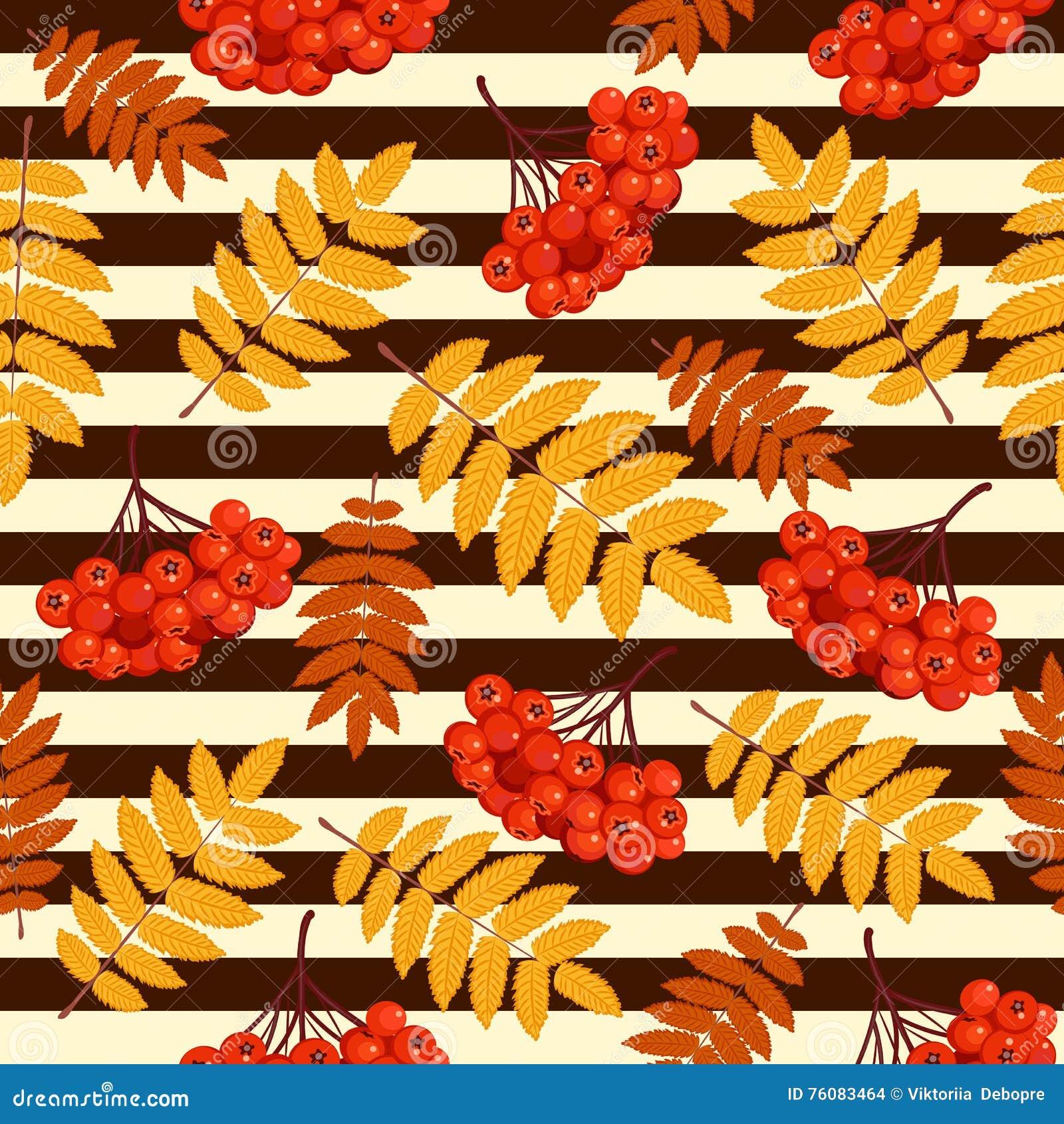Modèle sans couture d automne avec la sorbe