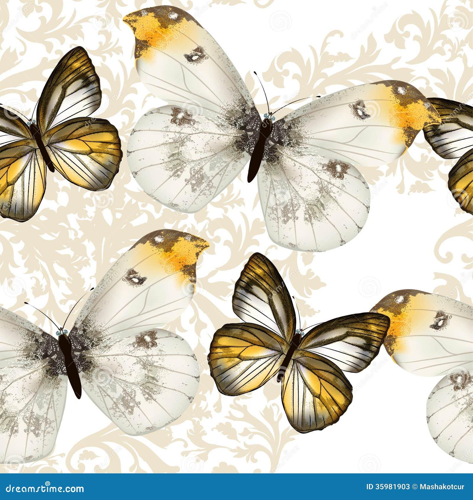 Mod le sans couture de papier peint de vecteur avec des papillons illustration de vecteur - Modele de papillon ...