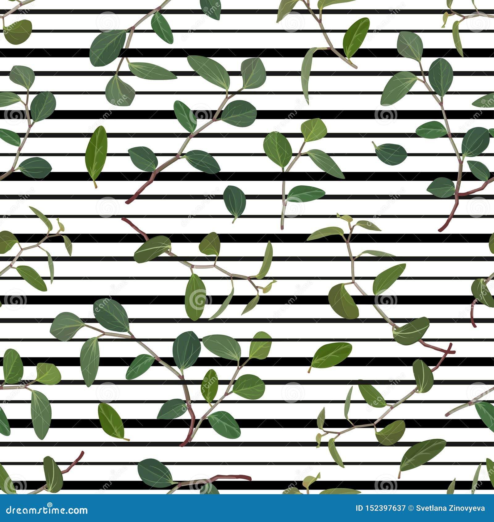 Modèle sans couture des feuilles et des branches vertes du tradiskantsaniya de fleurs sur un fond rayé Vecteur