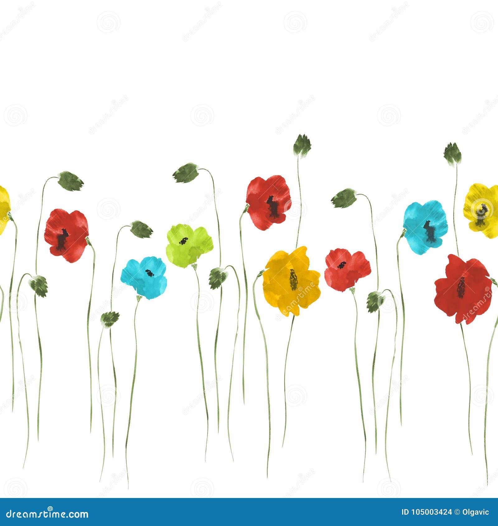 Modèle sans couture des fleurs rouges, bleues, jaunes des pavots de tiges vertes sur un fond blanc Aquarelle 2