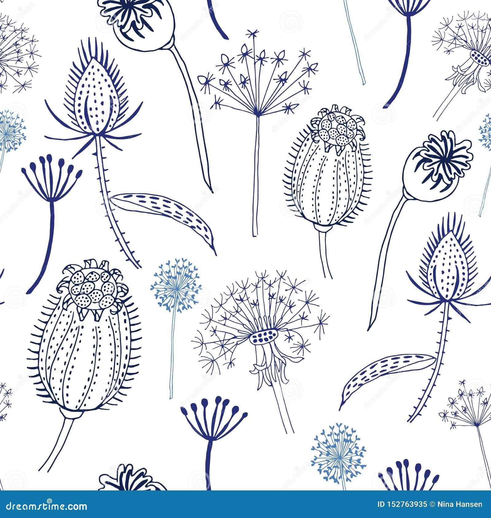 Modèle sans couture des fleurs sauvages et des cardères bleues