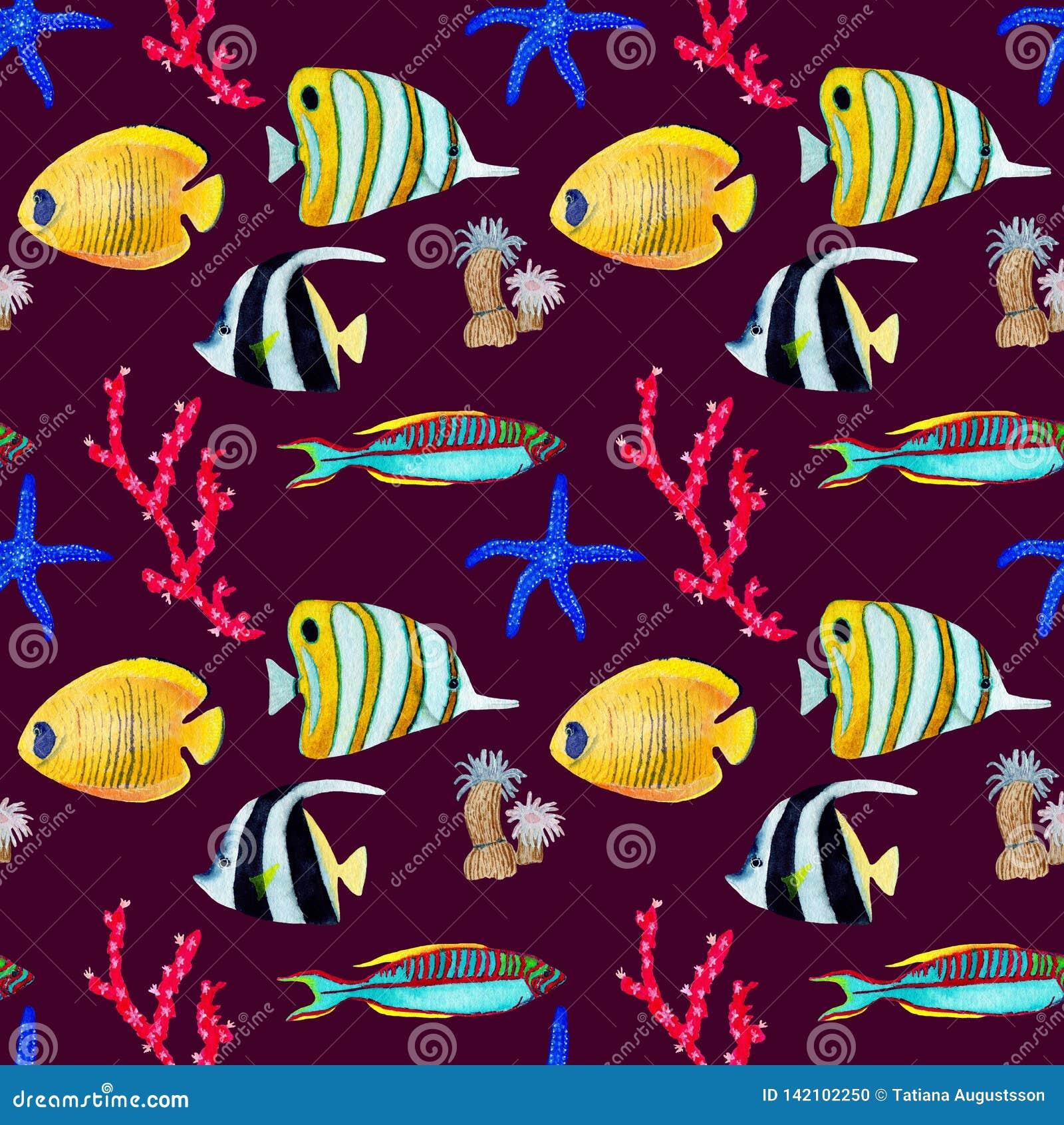 Modèle seemless tiré par la main dans l élément naturel du monde de mer d aquarelle Les coraux pêchent sur le fond rouge foncé