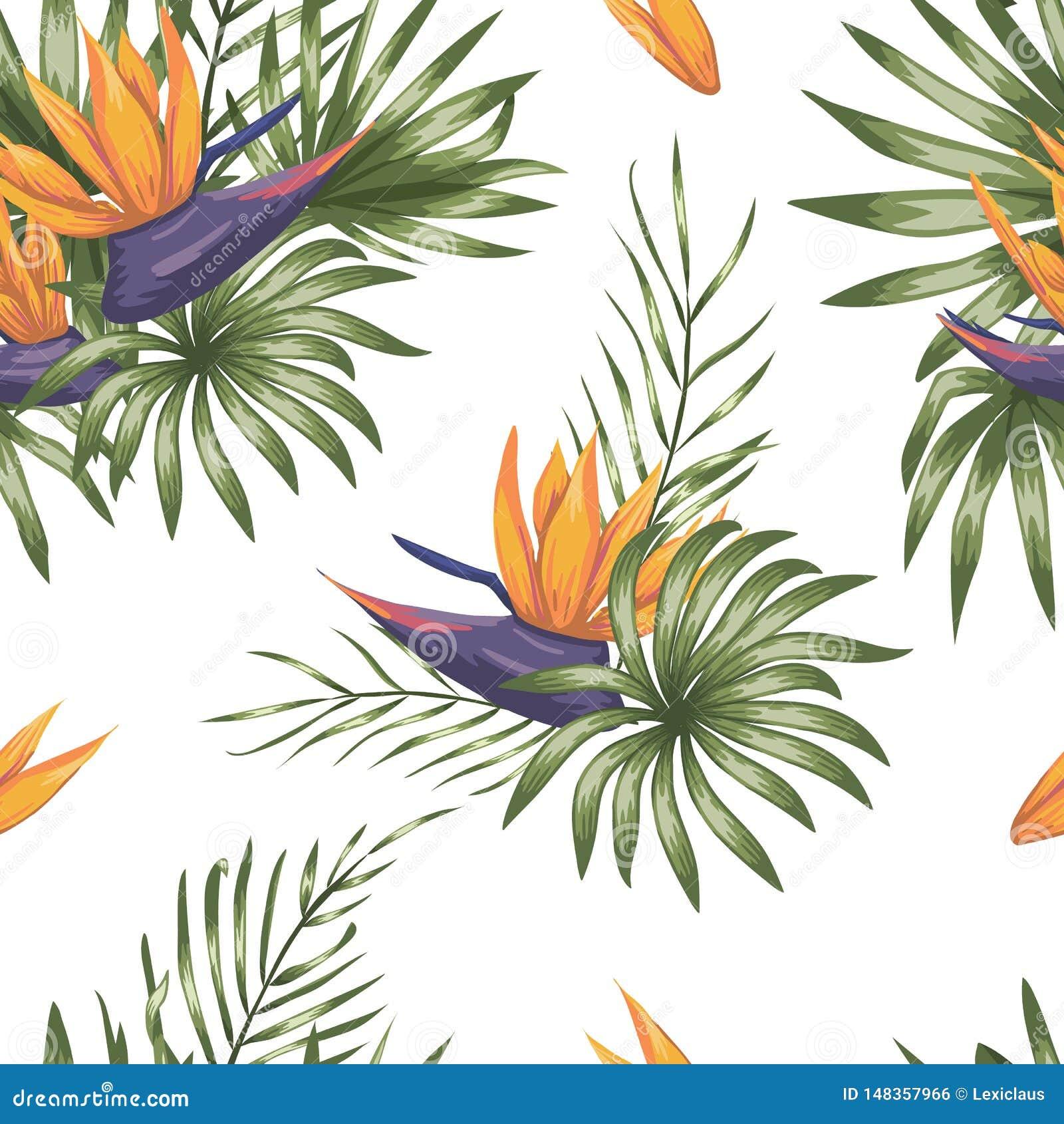 Mod?le sans couture de vecteur des feuilles tropicales vertes avec des fleurs de strelitzia