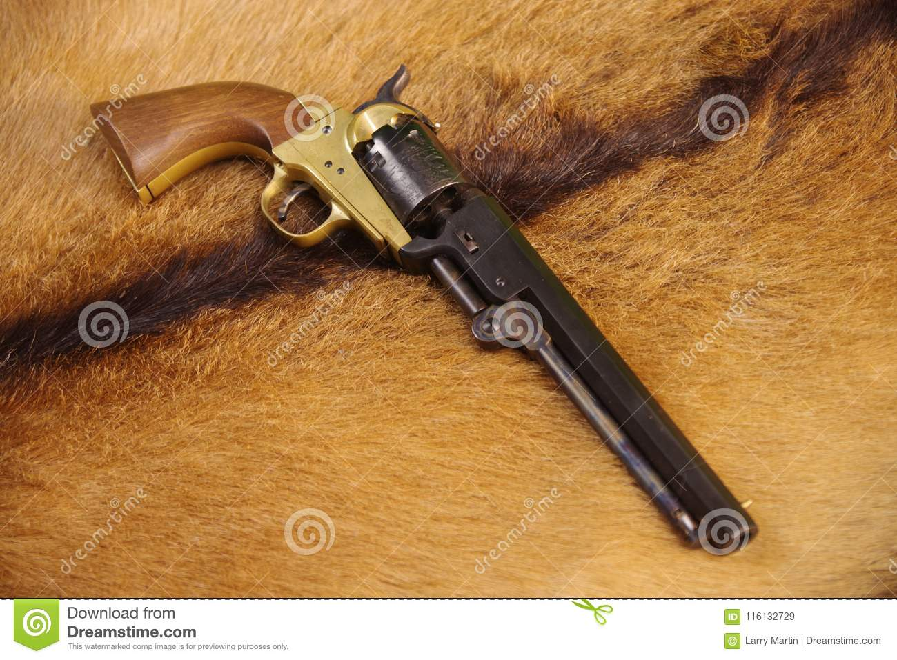 colt 1851 army 44 cal revolver stock image image of many golden