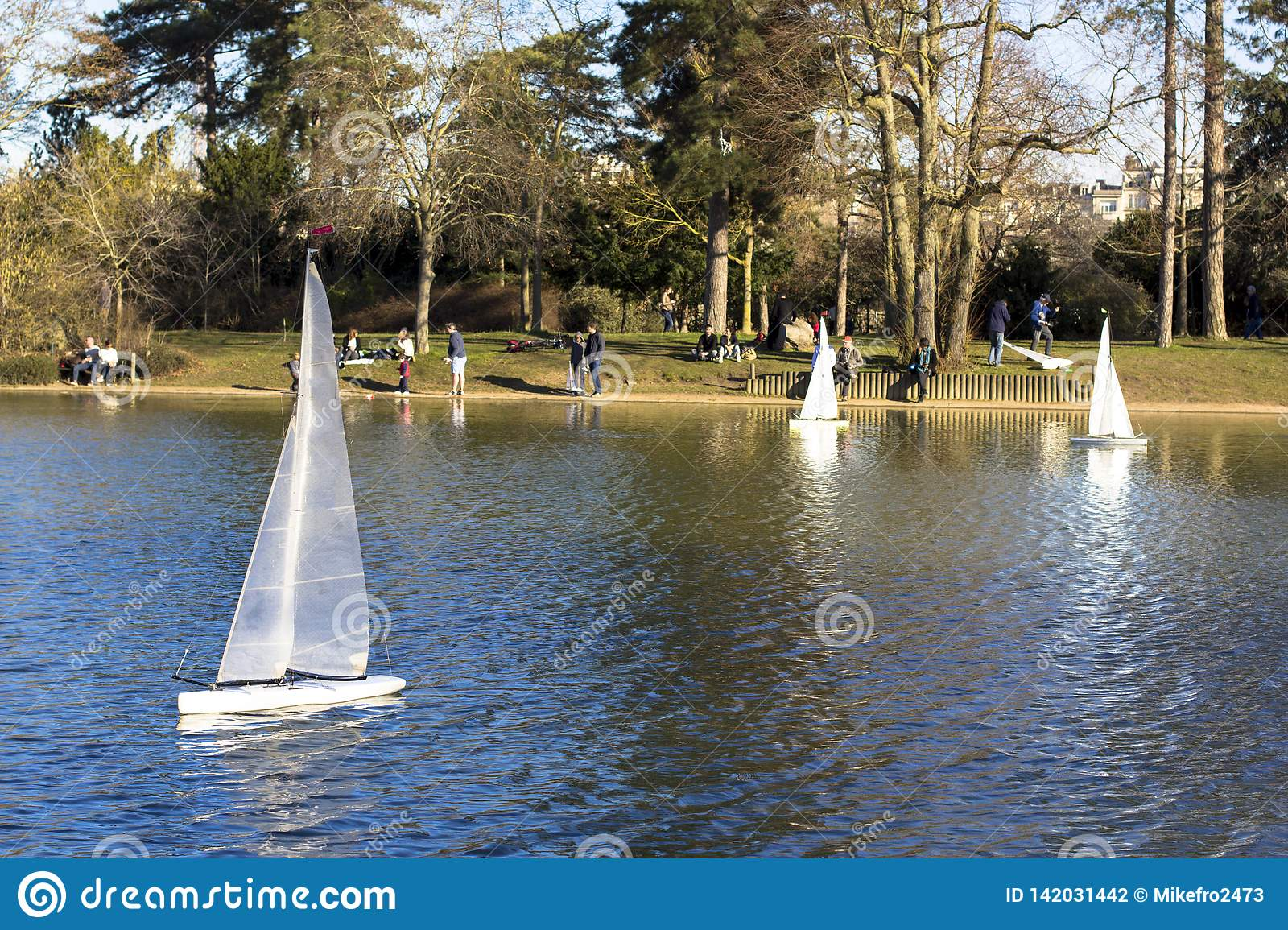 Model Sailboats In A Pond In A Park In Paris  Birds Fly