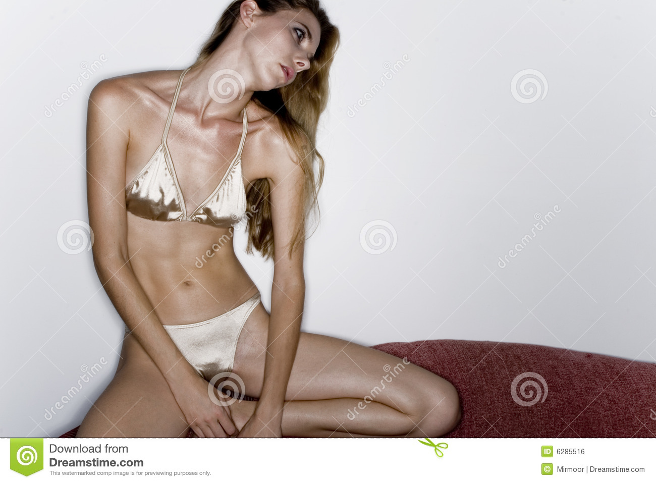 Model In Silver Bikini Royalty Free Stock Image Image 6285516