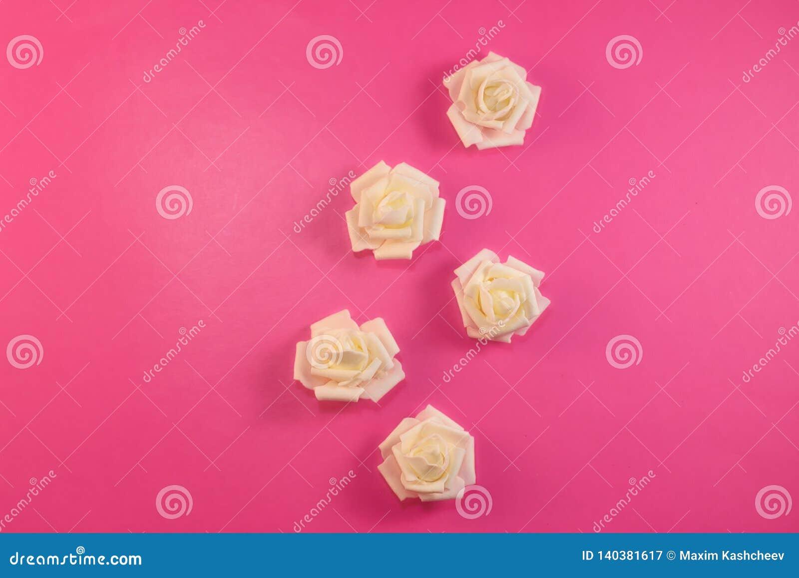 Modele as rosas brancas brancas no fundo do rosa pastel Configuração lisa, vista superior