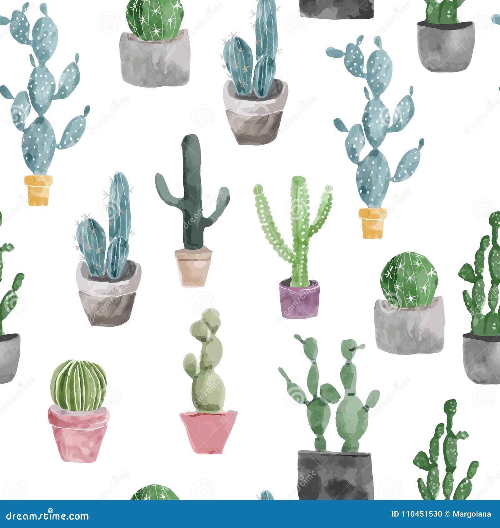Modell av kaktuns och suckulenter som isoleras på vit bakgrund