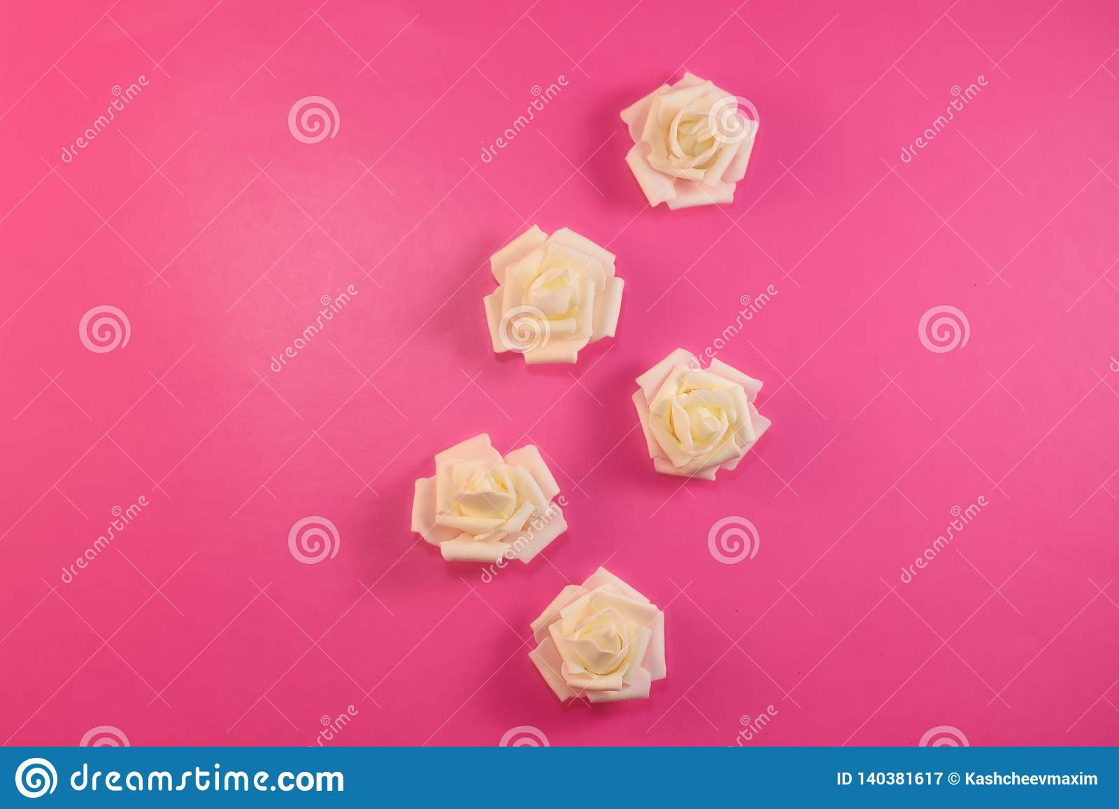 Modelli le rose bianche bianche sul fondo di rosa pastello Disposizione piana, vista superiore