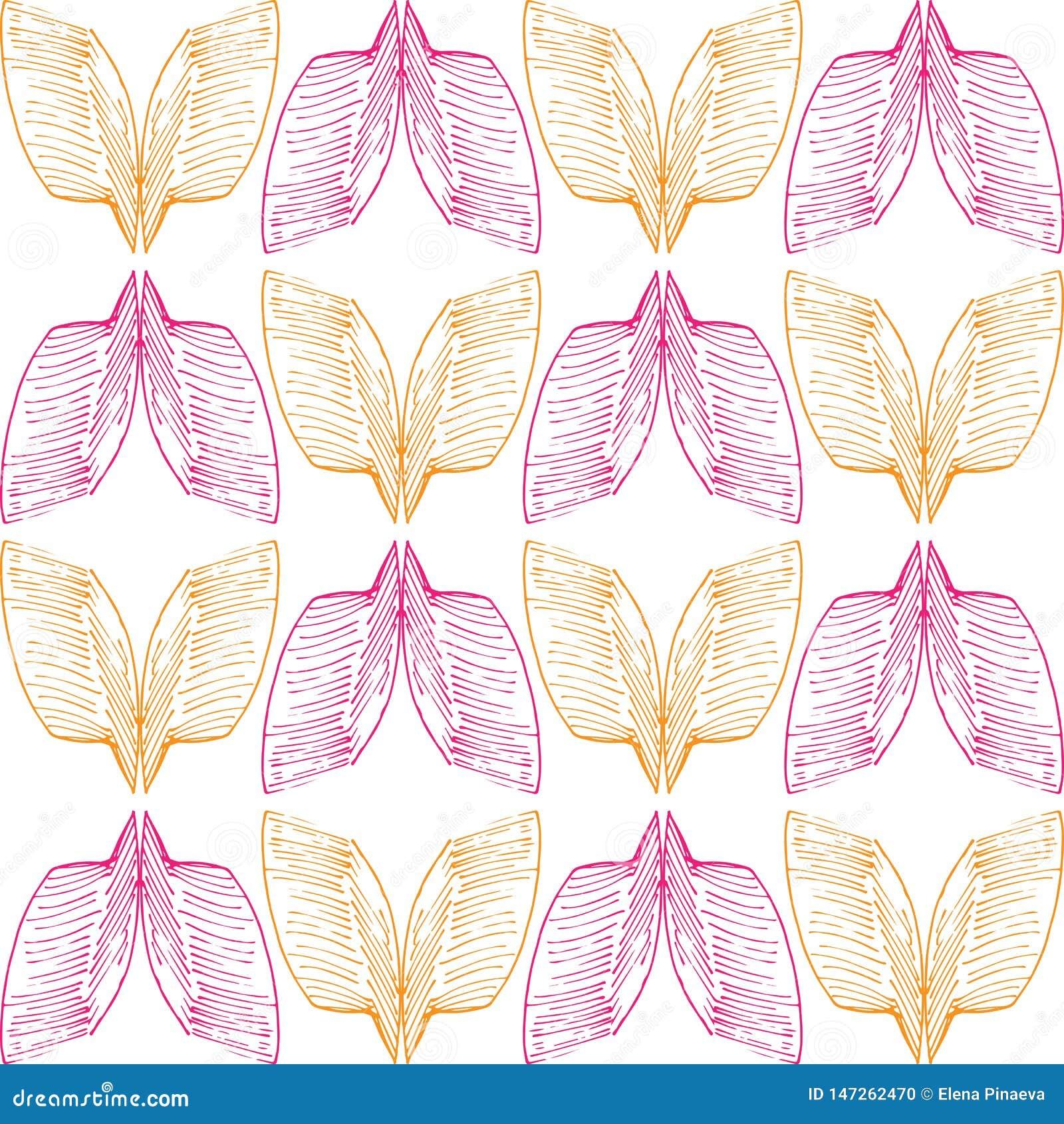 Modello arancio e rosa del bstract del  di Ð delle ali su fondo senza cuciture